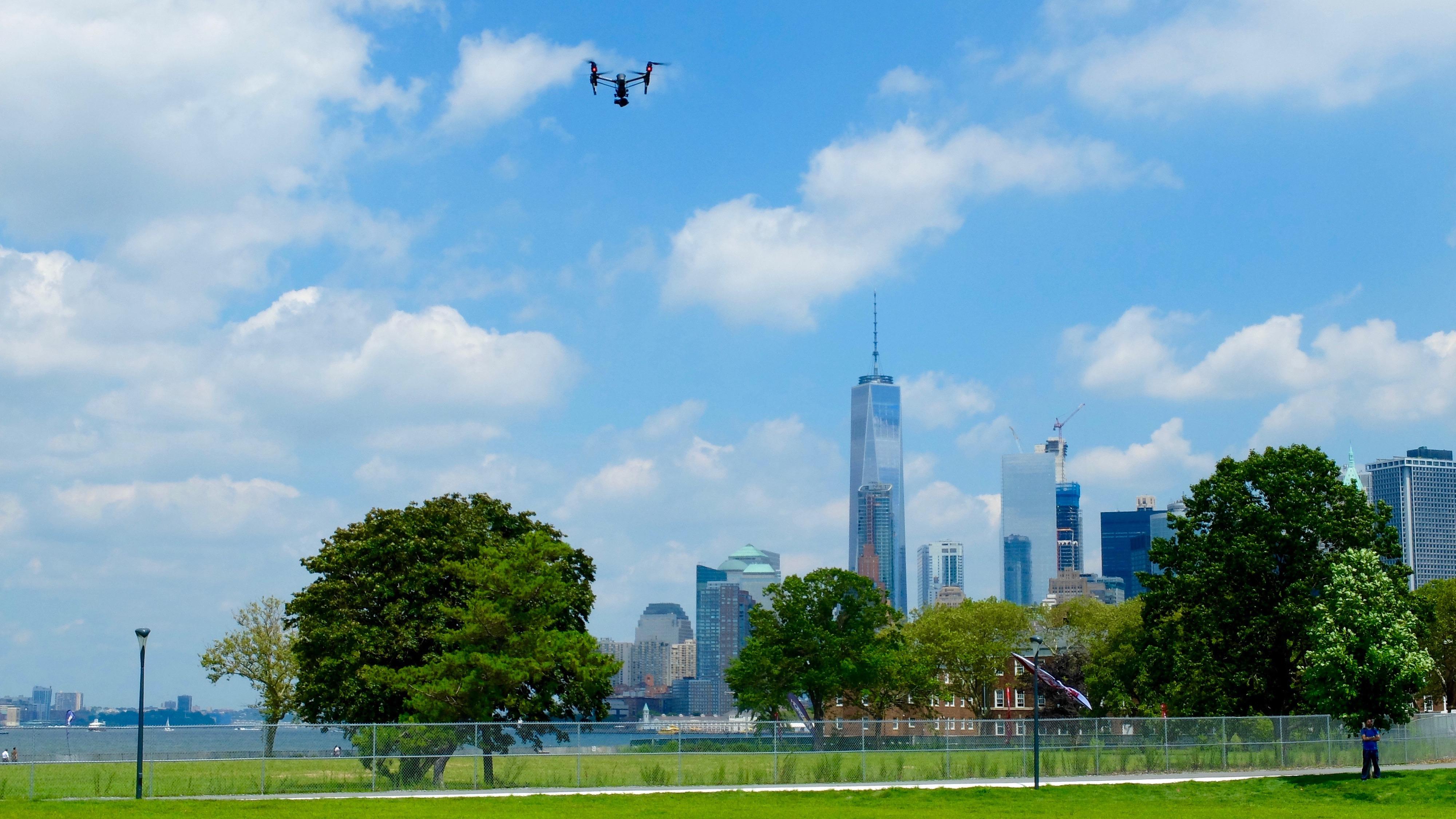 drone wish