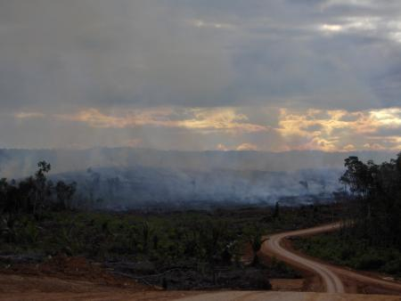 Smoke rising from a Korindo plantation. Mighty says the photos were taken from across a nearby river, probably in 2013.