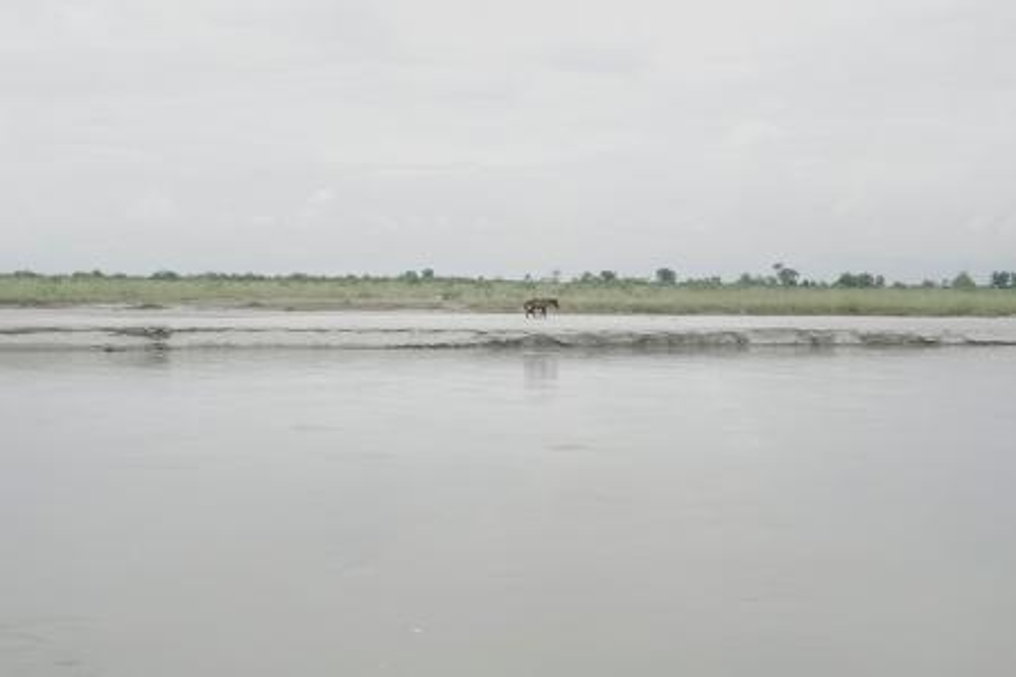 India Assam Brahmaputra