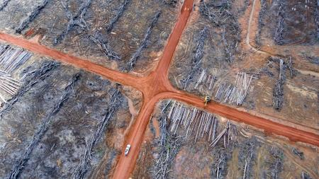 Aerial photograph showing a pile of wood that has been prepared to be burned.