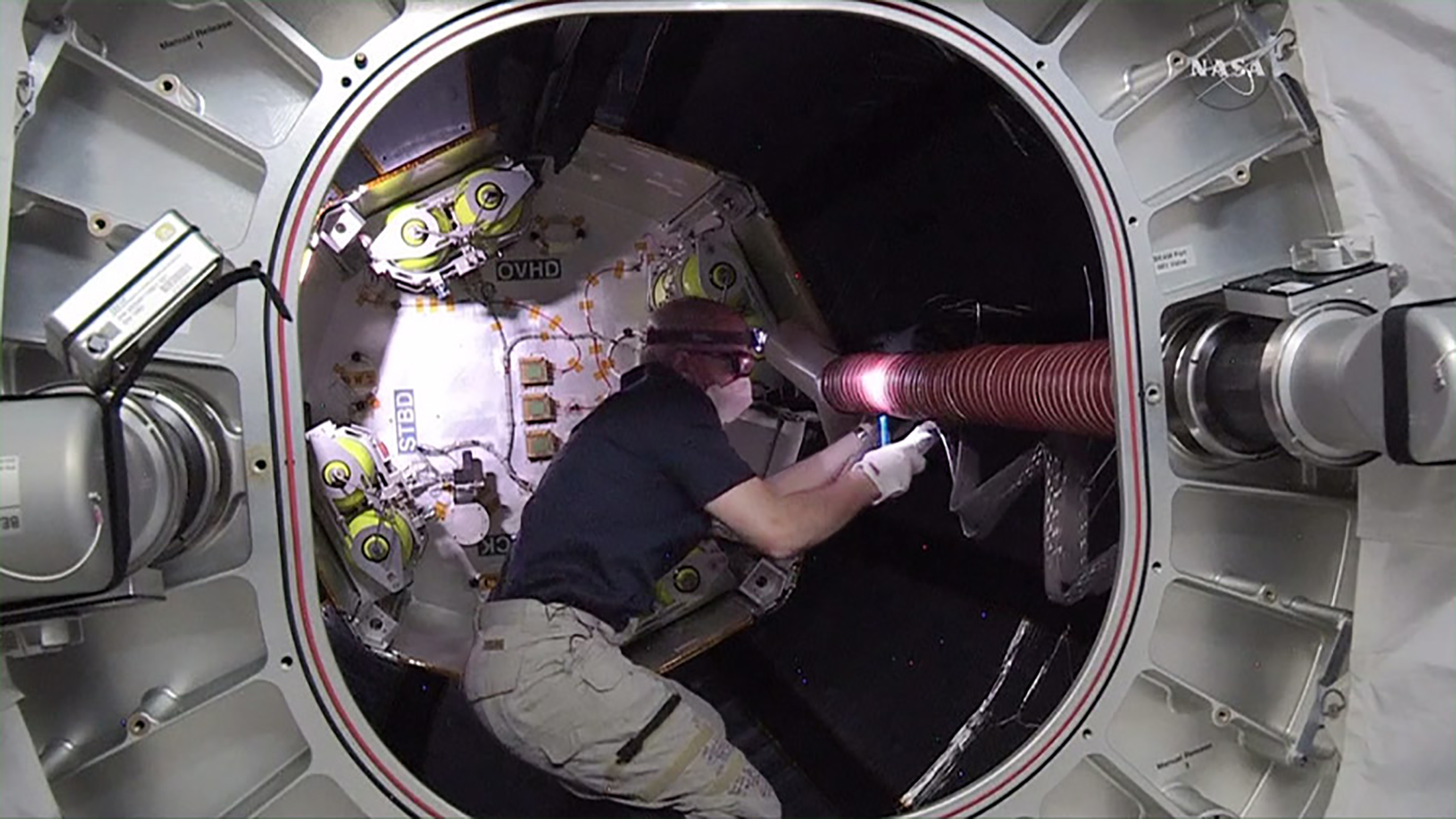 NASA astronaut Jeff Williams works inside the Bigelow Expandable Activity Module (BEAM) attached to the International Space Station in this still image from NASA TV taken June 6, 2016.  NASA/Handout via Reuters  THIS IMAGE HAS BEEN SUPPLIED BY A THIRD PARTY. IT IS DISTRIBUTED, EXACTLY AS RECEIVED BY REUTERS, AS A SERVICE TO CLIENTS. FOR EDITORIAL USE ONLY. NOT FOR SALE FOR MARKETING OR ADVERTISING CAMPAIGNS - RTSGAGK