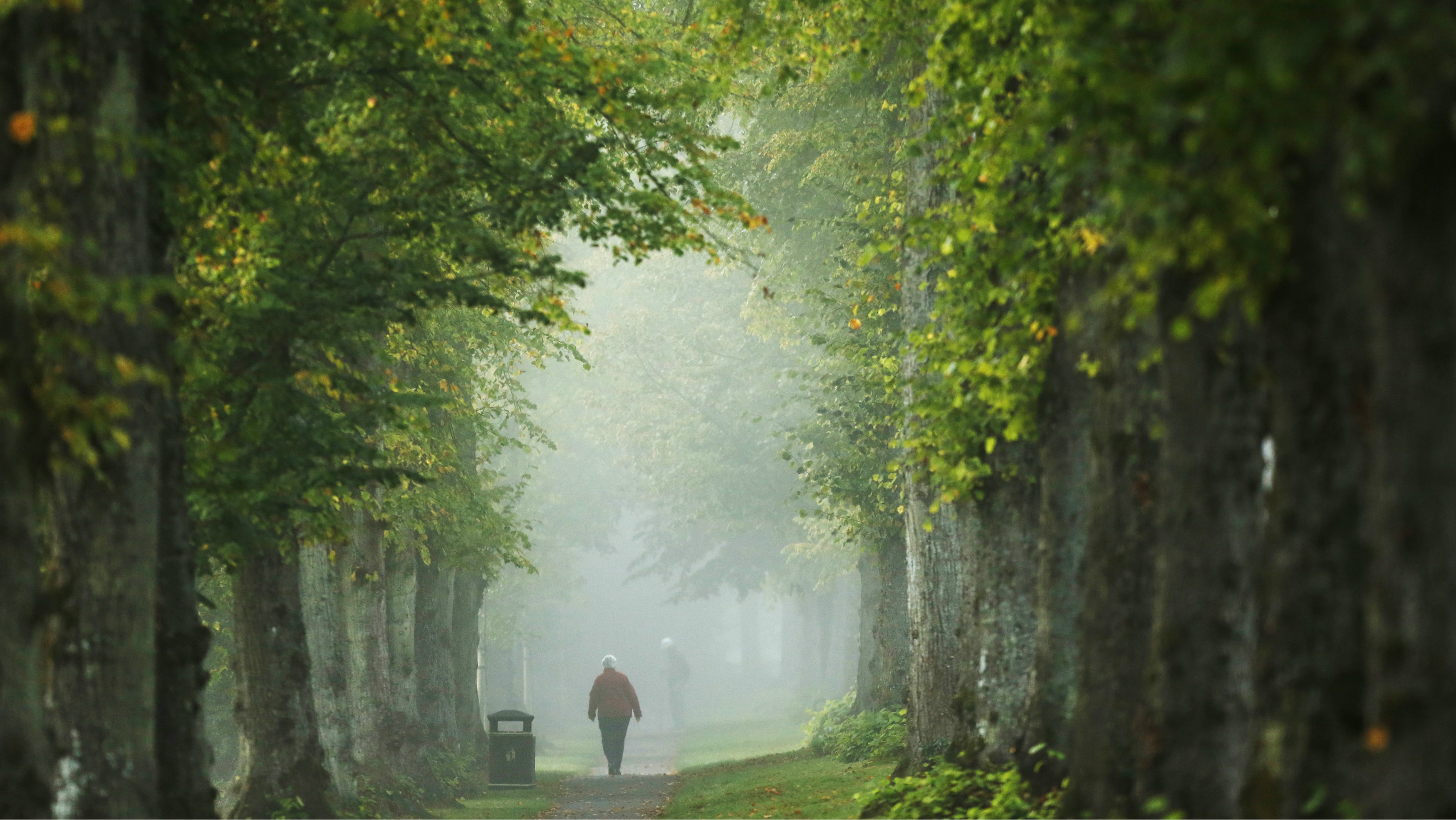 A woman walks through autumn mist at Arundel in Southern England October 7, 2013. REUTERS/Luke MacGregor (BRITAIN - Tags: ENVIRONMENT TPX IMAGES OF THE DAY)