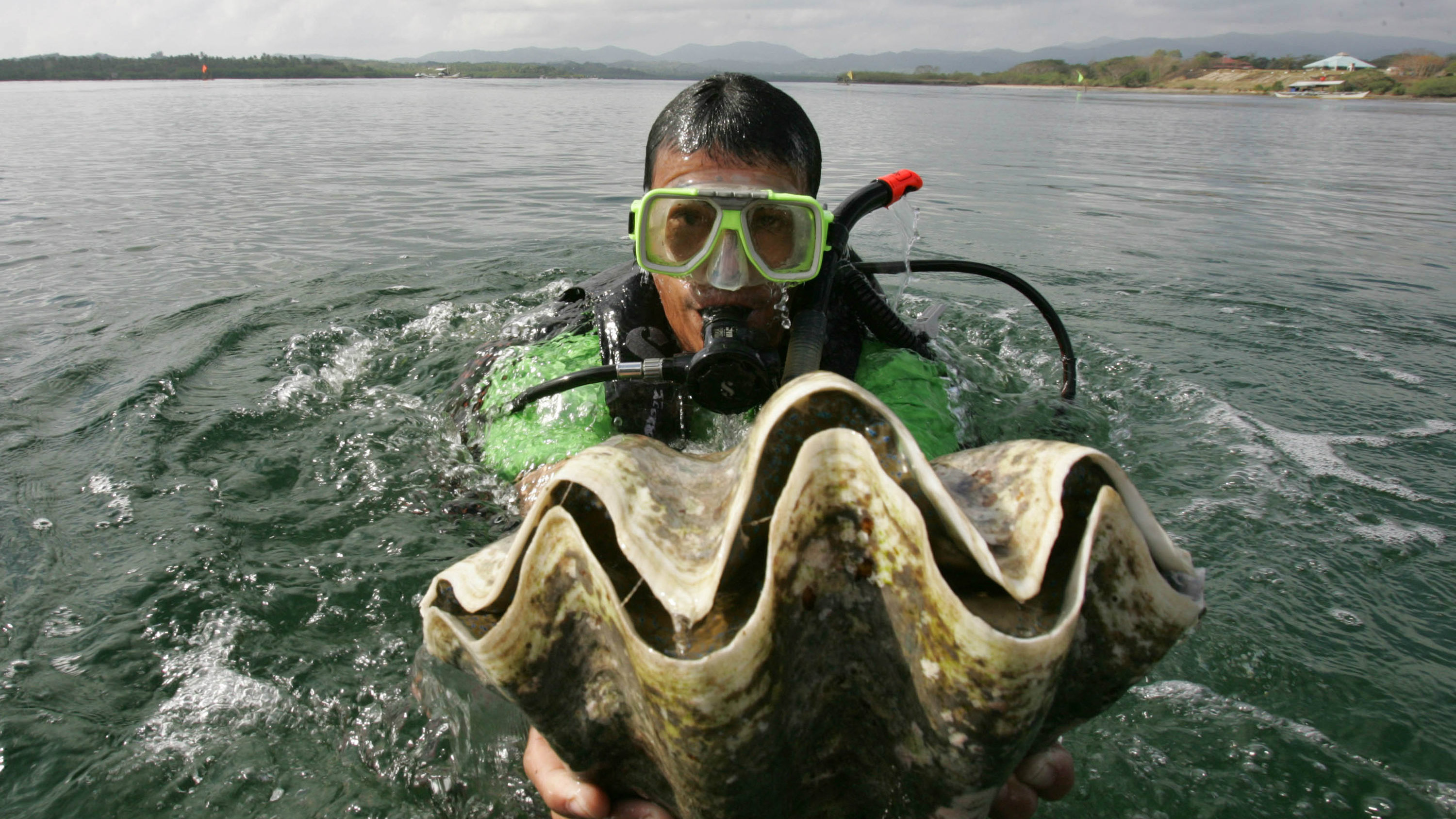 a filipino fisherman kept a 75pound pearl under his bed