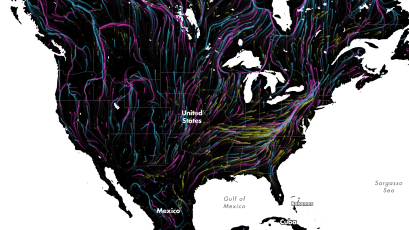 A screenshot of an animated map showing projected migration paths.