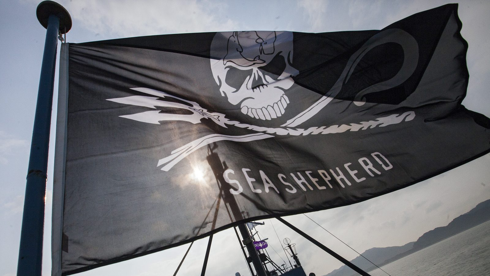 A skull and crossbones flag flies on the bow of the Steve Irwin, the flagship vessel of animal protection activists Sea Shepherd Conservation Society, moors in Hong Kong waters, Hong Kong, China, 06 April 2016. The Steve Irwin is in the Southern Chinese city after a lengthy international pursuit of a fleet of five mainland Chinese fishing vessels that were engaged in illegal driftnet fishing.