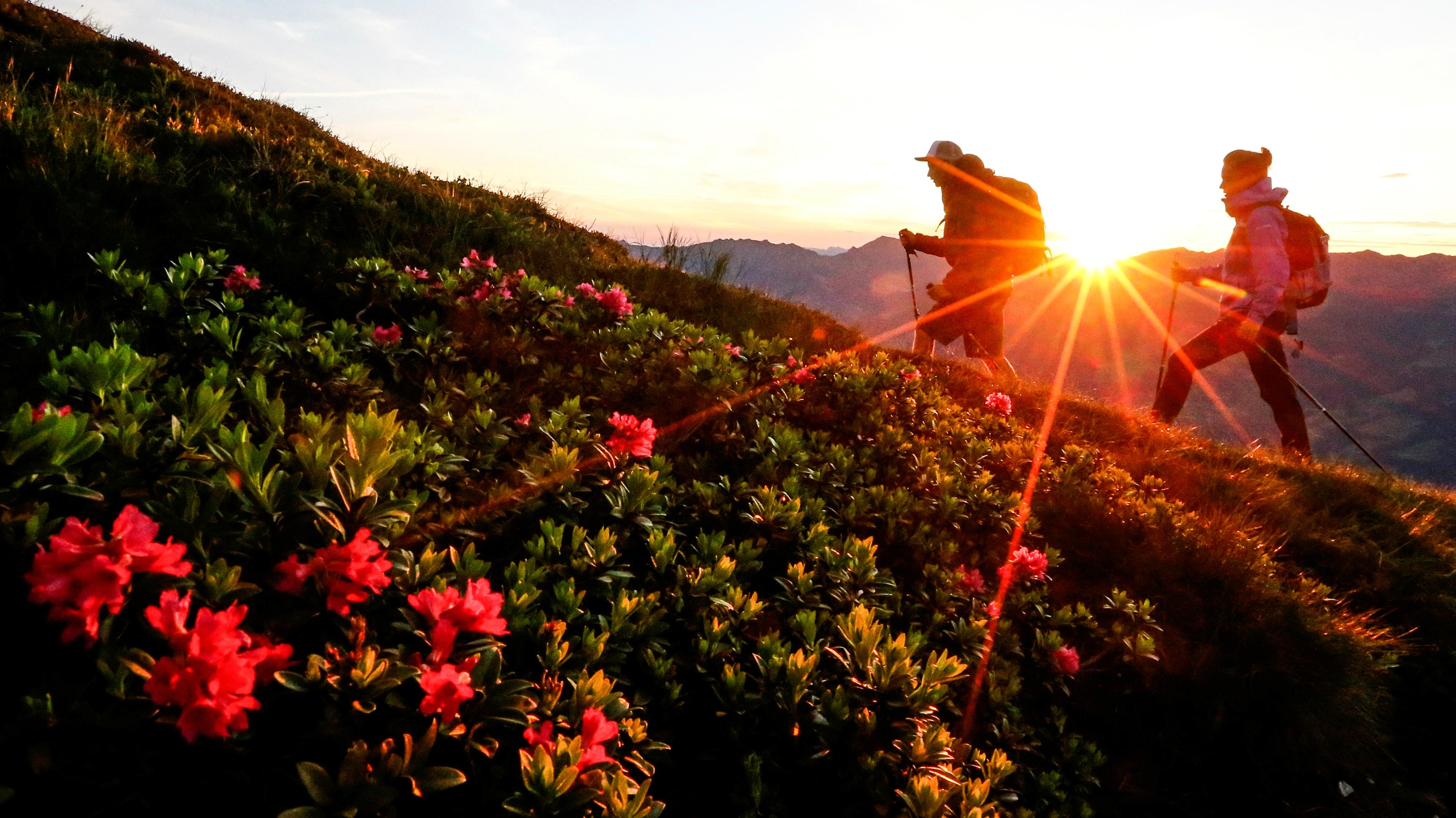 summer hiking crop