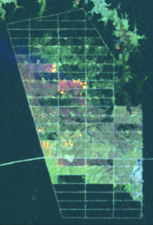 Fires in Korindo's Agro Lestari concession on Papua, Sept 22-30 2015.