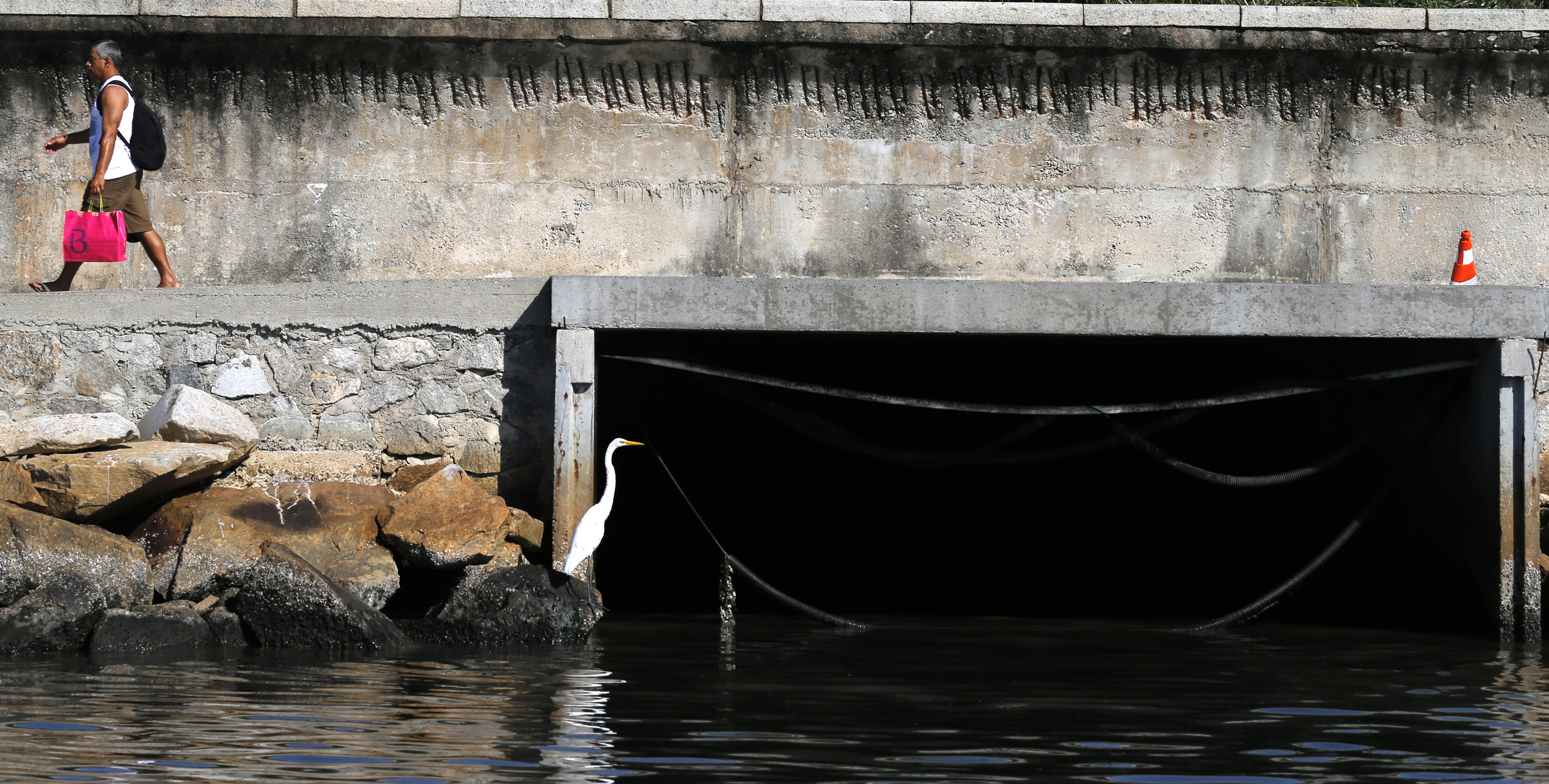 A bird sits next to a sewage canal at the Guanabara Bay in Rio de Janeiro March 12, 2014. According to the local media, the city of Rio de Janeiro continues to face criticism locally and abroad that the bodies of water it plans to use for competition in the 2016 Olympic Games are too polluted to host events. Untreated sewage and trash frequently find their way into the Atlantic waters of Copacabana Beach and Guanabara Bay - both future sites to events such as marathon swimming, sailing and triathlon events. Picture taken on March 12, 2014.