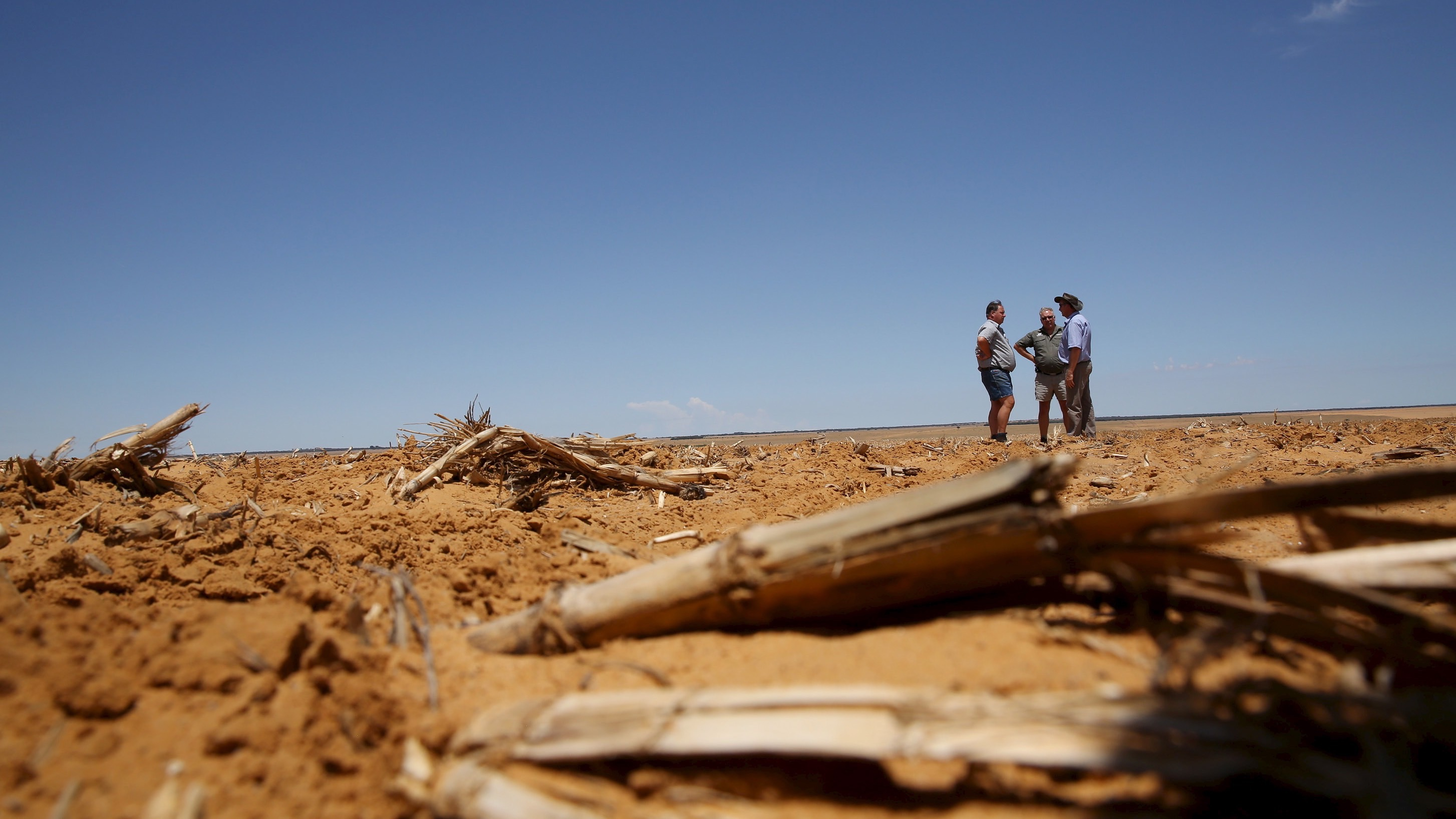 Farmers chat ahead of planting at a maize field in Wesselsbron, a small maize farming town in the Free State province of South Africa, January 13, 2016. Mid-summer rains may be too little, too late for farmers as the South African countryside bakes under the worst drought in over a century. Last year was the driest on record. Picture taken January 13.   REUTERS/Siphiwe Sibeko - RTX22YBA