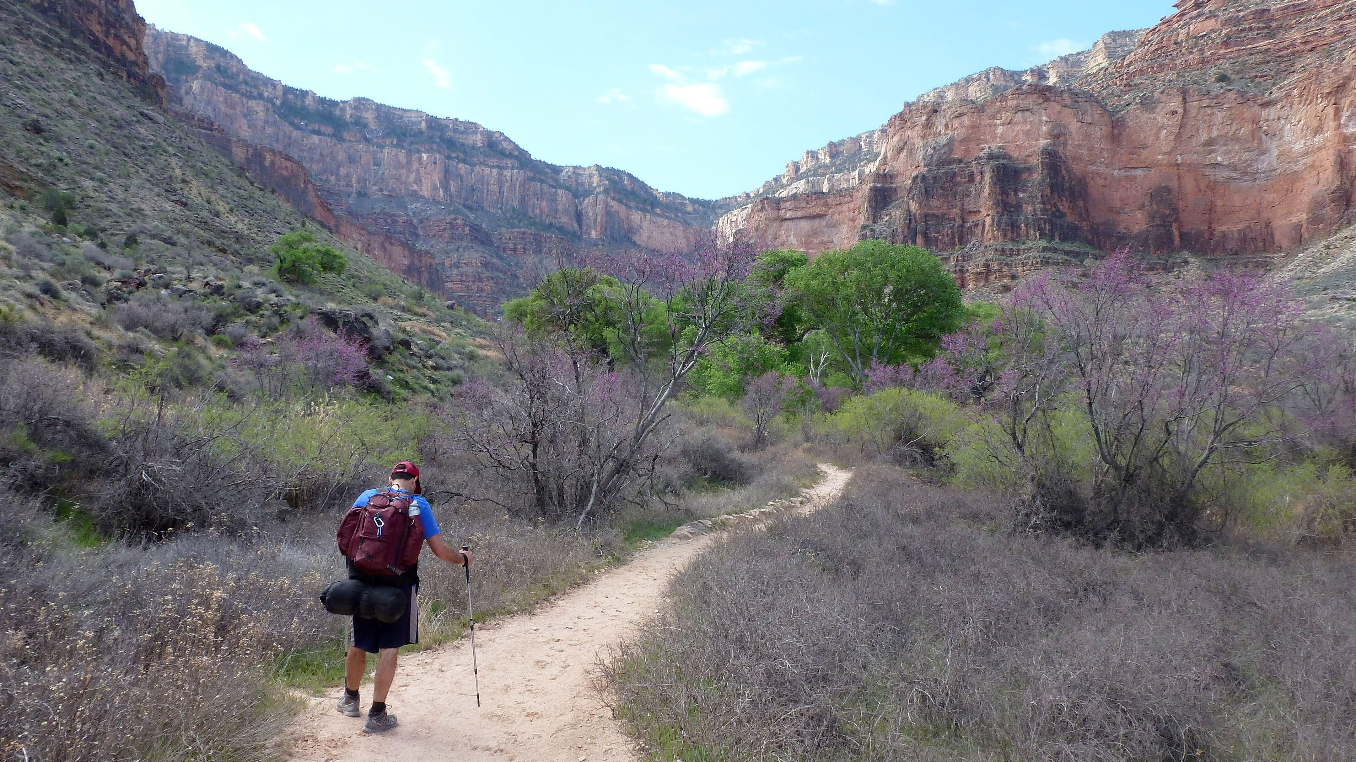 A hiker makes his way back up the Grand Canyon along the Bright Angel Trail on March 17, 2015. Many hikers choose to hike back up the canyon along the Bright Angel trail in Grand Canyon National Park because it has water stops along the way.