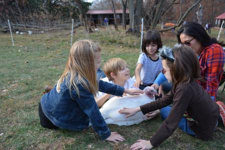 children pet a turkey at the Thanksgiving for the Turkeys event at Poplat Springs Animal Sanctuary