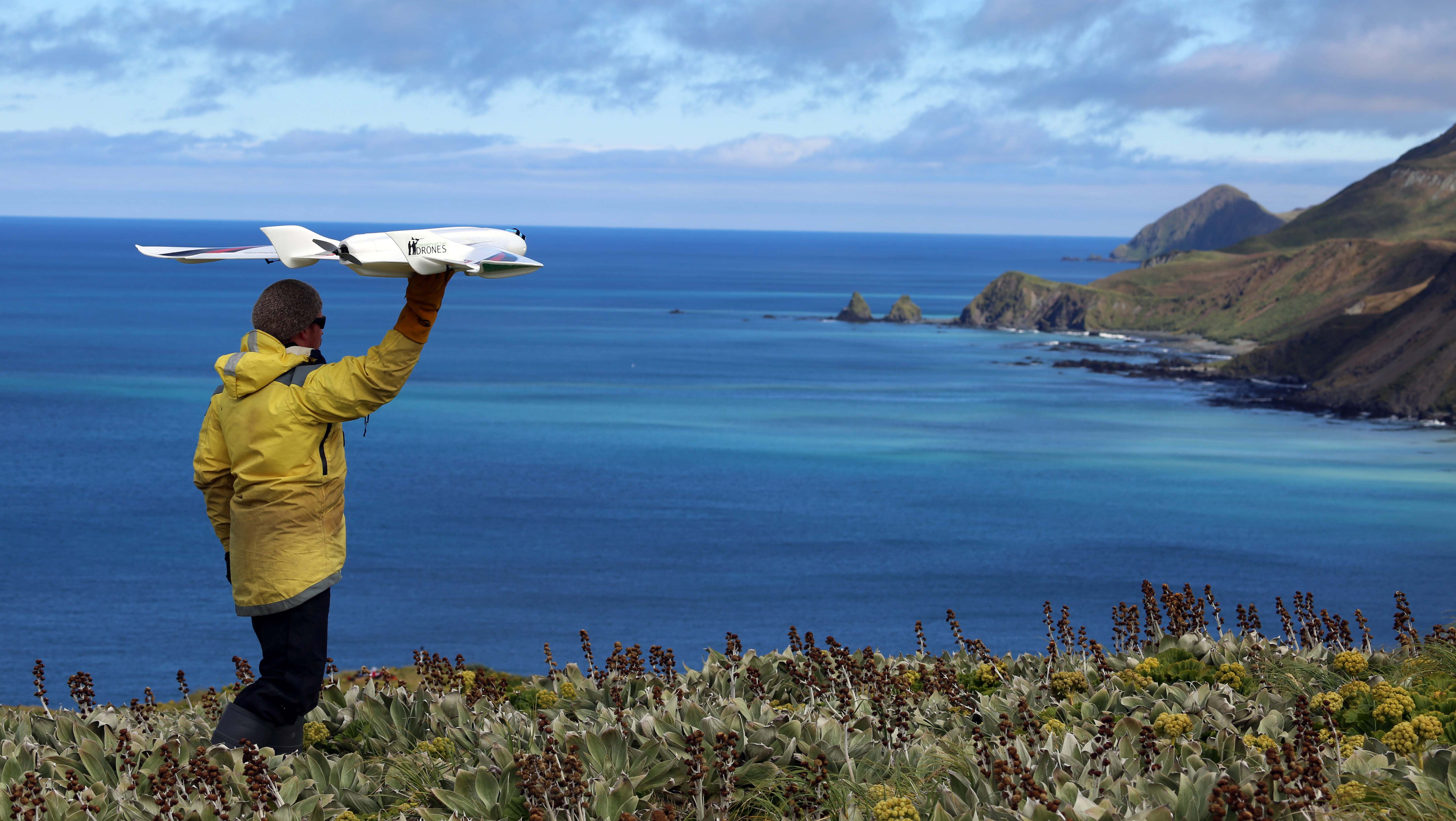 A growing group of scientists are using drones for wildlife conservation and research.