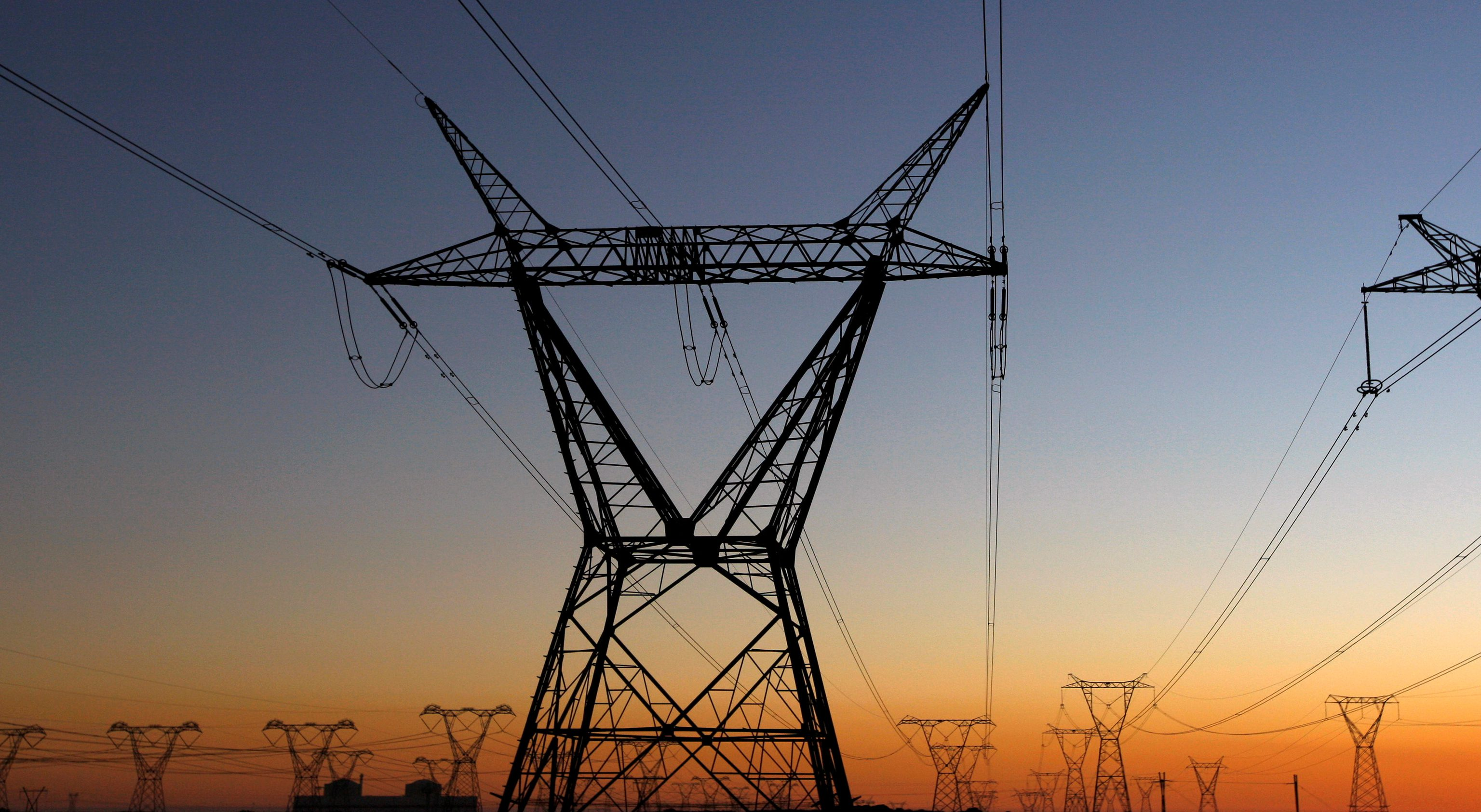 Electricity pylons carry power from Cape Town's Koeberg nuclear power plant, South Africa, July 17, 2009.