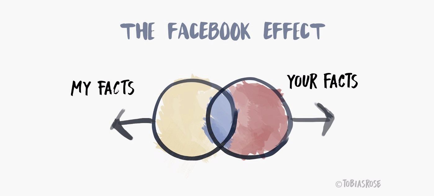 facts venn diagram when facebook's involved