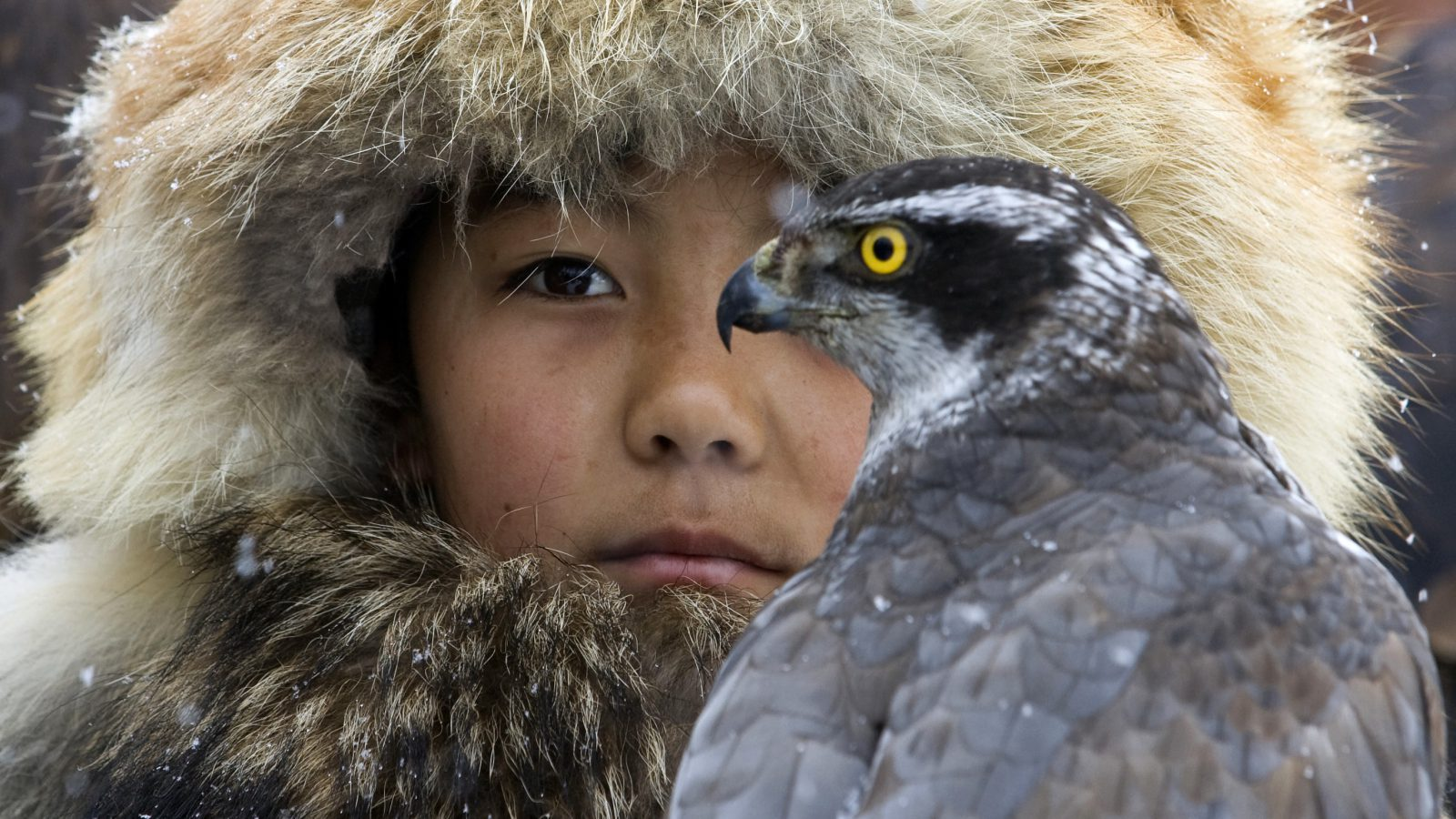 A hunter with a hawk in Kazakhstan