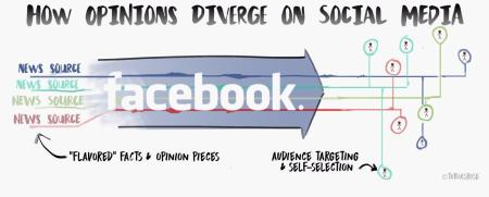 opinion divergence on social media