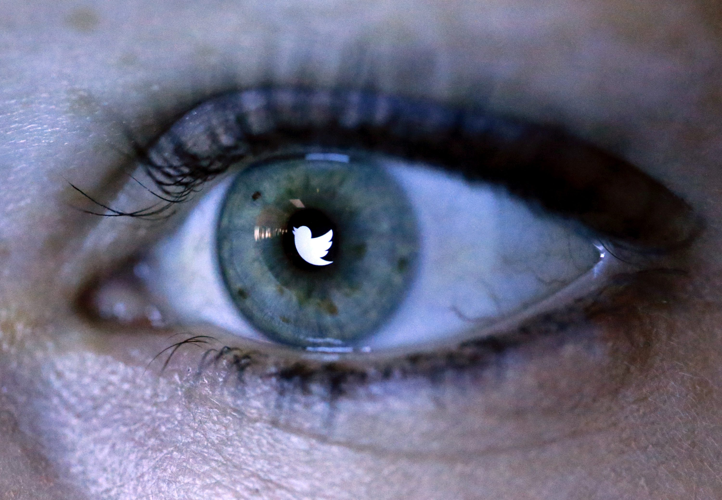 An illustration picture shows the Twitter logo reflected in the eye of a woman in Berlin, November 7, 2013.