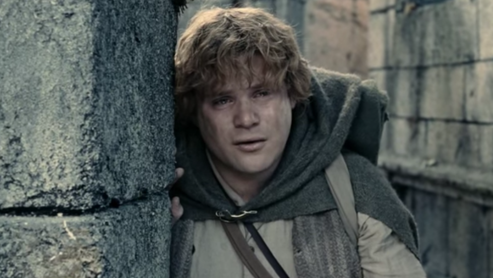lord of the rings frodo sam