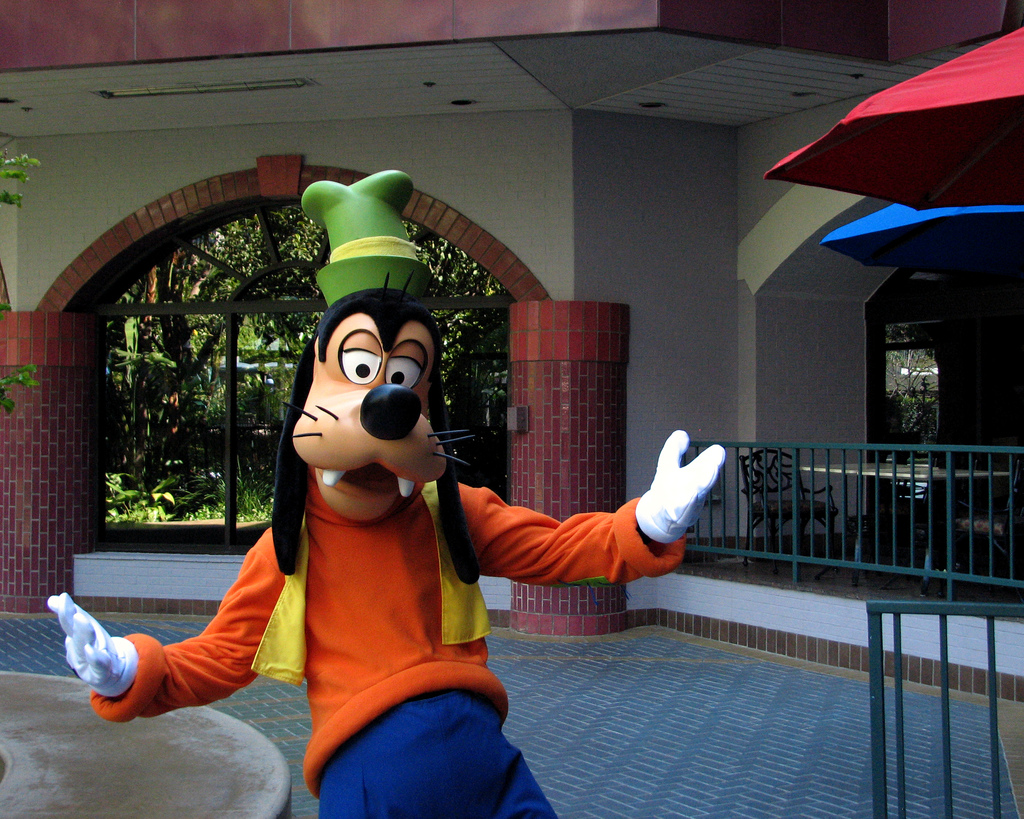 A Reddit AMA with Goofy: The ridiculous and heartbreaking