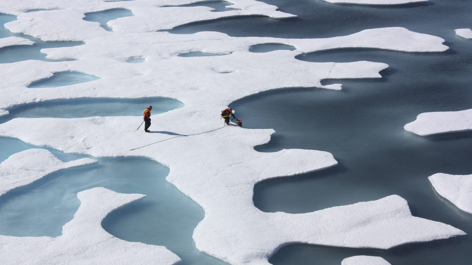 Scientists punched through the sea ice to find waters richer in phytoplankton than any other region on earth.  Phytoplankton, the base component of the marine food chain, were thought to grow in the Arctic Ocean only after sea ice had retreated for the summer. Scientists now think that the thinning Arctic ice is allowing sunlight to reach the waters under the sea ice, catalyzing the plant blooms where they had never been observed. REUTERS/Kathryn Hansen/NASA   (UNITED STATES - Tags: ENVIRONMENT SCIENCE TECHNOLOGY) THIS IMAGE HAS BEEN SUPPLIED BY A THIRD PARTY. IT IS DISTRIBUTED, EXACTLY AS RECEIVED BY REUTERS, AS A SERVICE TO CLIENTS. FOR EDITORIAL USE ONLY. NOT FOR SALE FOR MARKETING OR ADVERTISING CAMPAIGNS - RTR33FOY