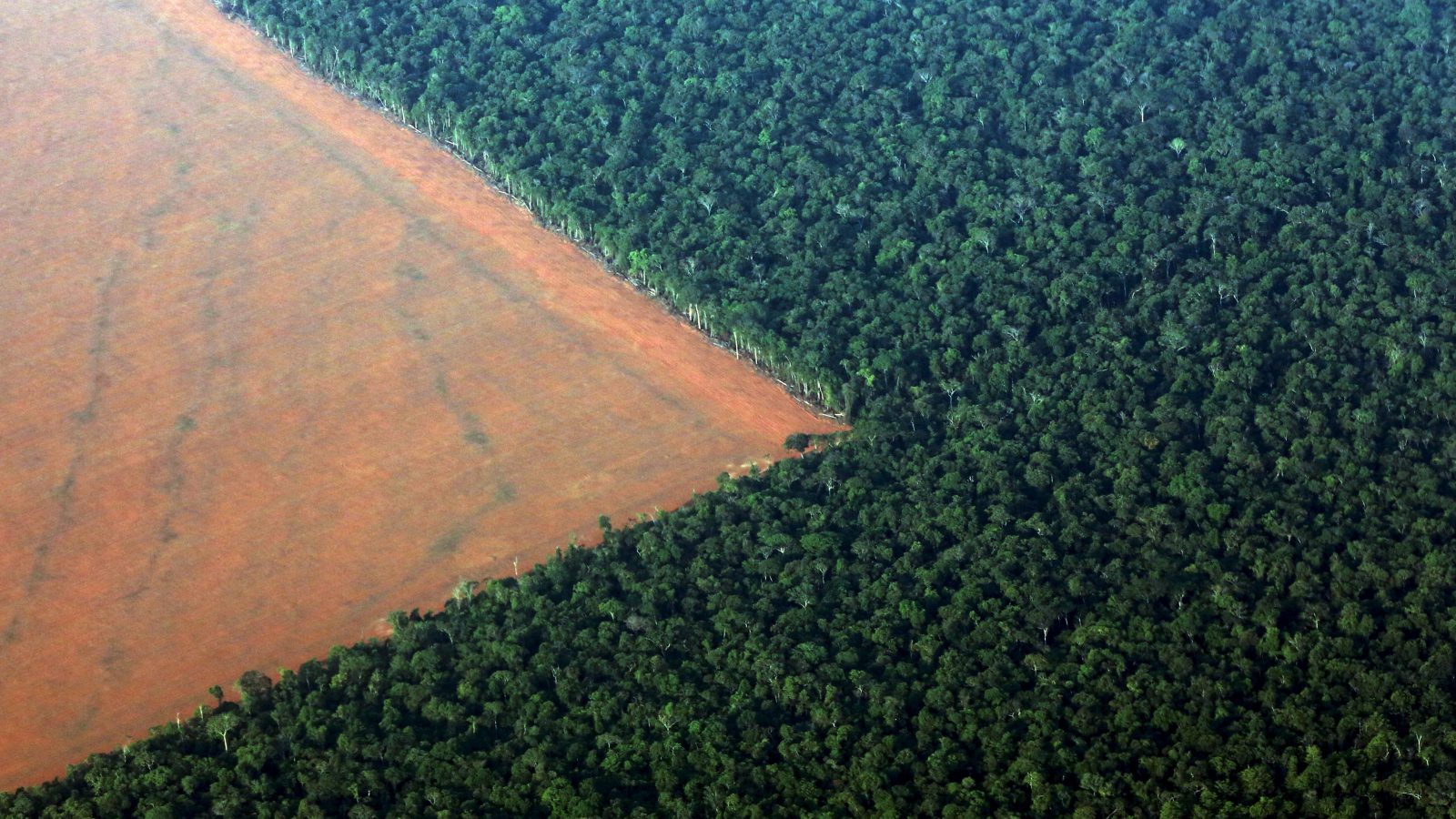 The Amazon rain forest (R), bordered by deforested land prepared for the planting of soybeans, is pictured in this aerial photo taken over Mato Grosso state in western Brazil, October 4, 2015. Brazil will produce a record 97.8 million tonnes of soybeans in 2015/16, a 3.2 percent rise compared to 2014/15, but much of this additional volume will be stored in the country, with little impact on export volumes, estimated on Monday the Brazilian Association of Vegetable Oil Industries (ABIOVE).  Picture taken October 4, 2015.  REUTERS/Paulo Whitaker      TPX IMAGES OF THE DAY      - RTS35W9