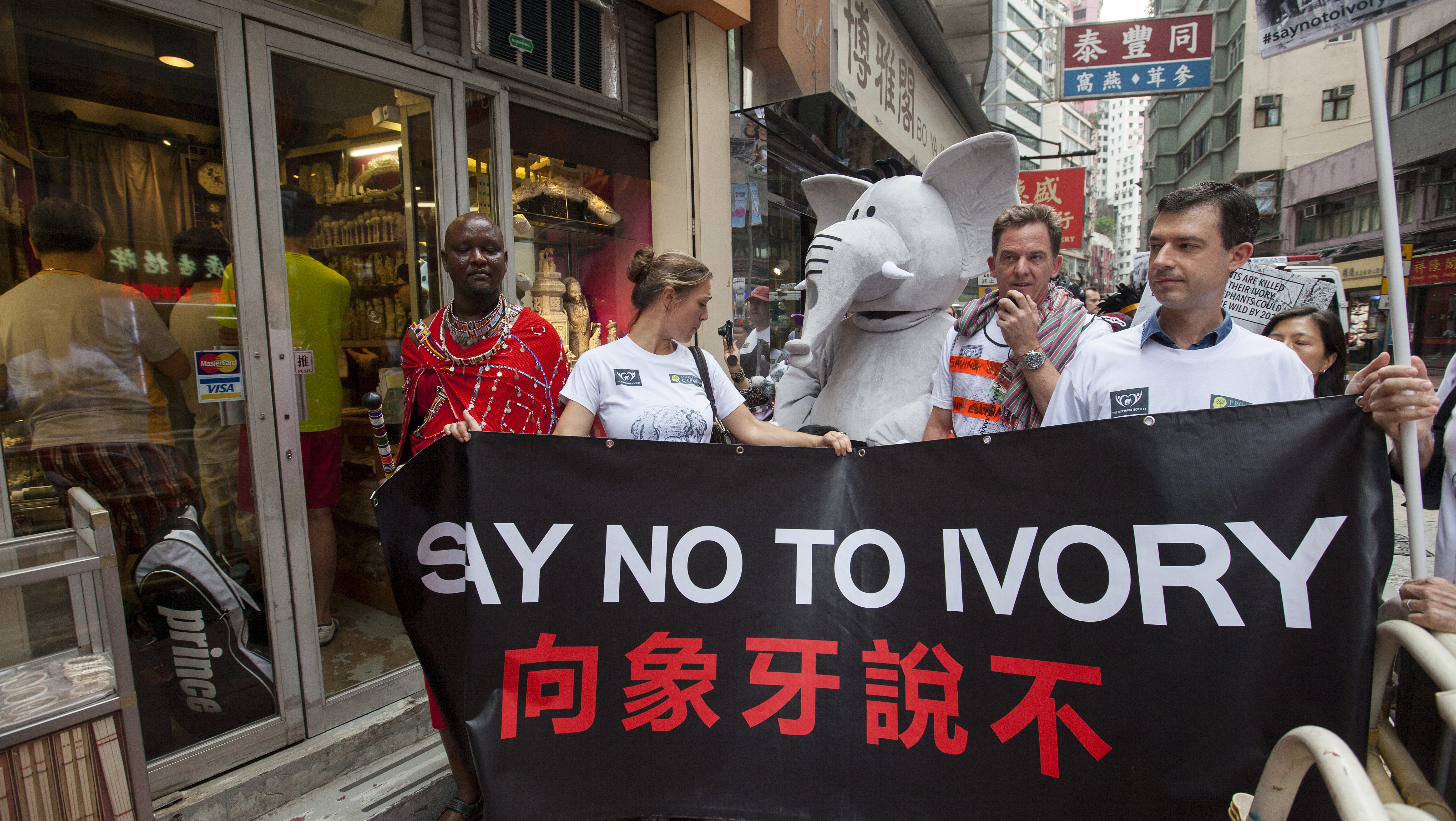 Activists from Project C:CHANGE and The Elephant Society take part in a 'Maasai March' ban ivory trade protest through the streets of Hong Kong's main ivory trading district of Sheung Wan, Hong Kong, China, 21 November 2015. The activists are calling on the Hong Kong government to ban the city's domestic ivory trade, which they say is a hub for the illegal laundering of ivory tusks from recently poached African elephants into Hong Kong's legal ivory market. A highlight of the 'Maasai March' was the presence of Kenyan activist Daniel Ole Tembo, a Masaai warrior and Predator Protection Programme Coordinator for Big Life Foundation, a Kenya-based NGO that is fighting illegal poaching and habitat destruction. EPA/ALEX HOFFORD
