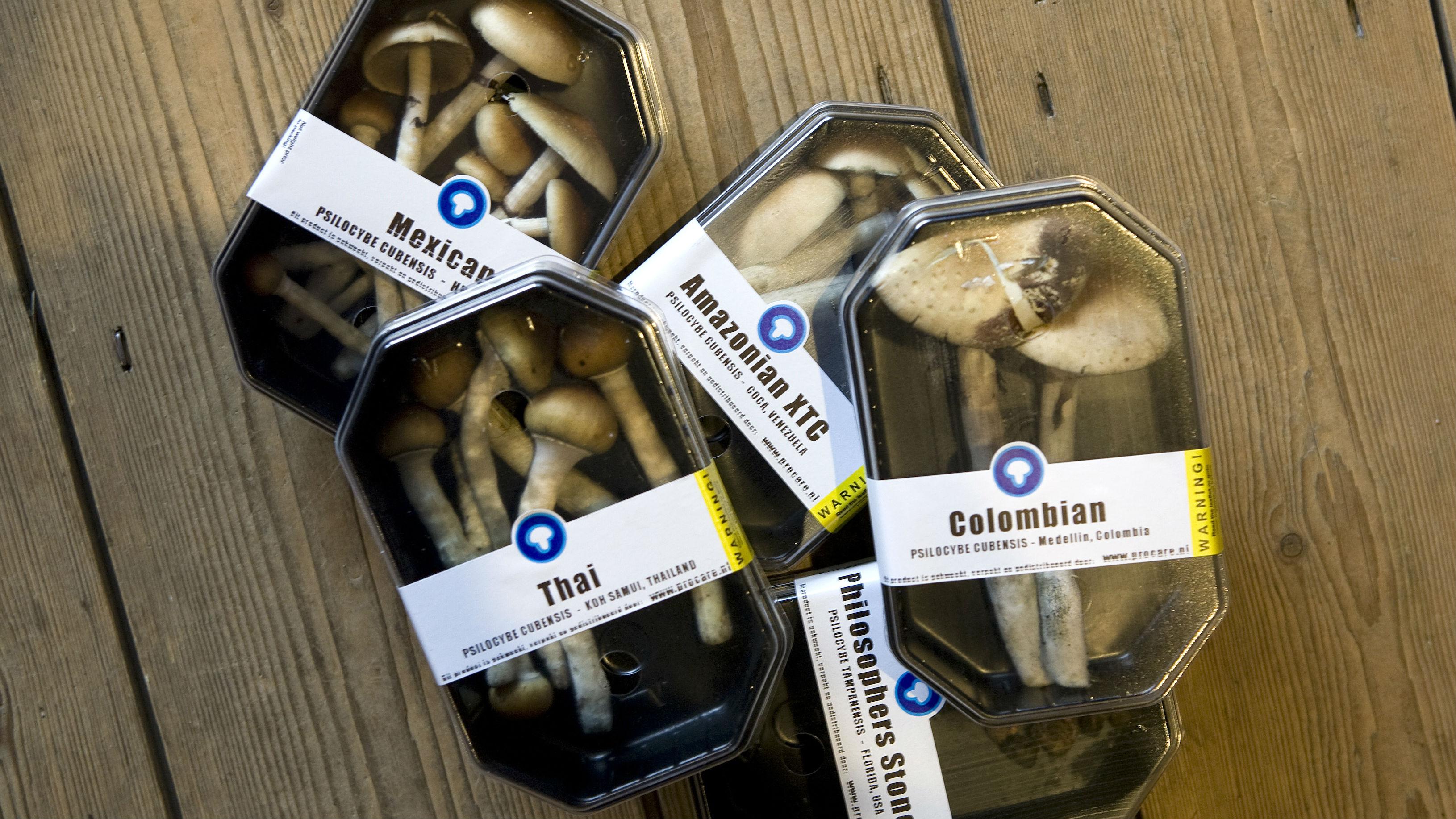Cartons Of Magic Mushrooms To Be Sold