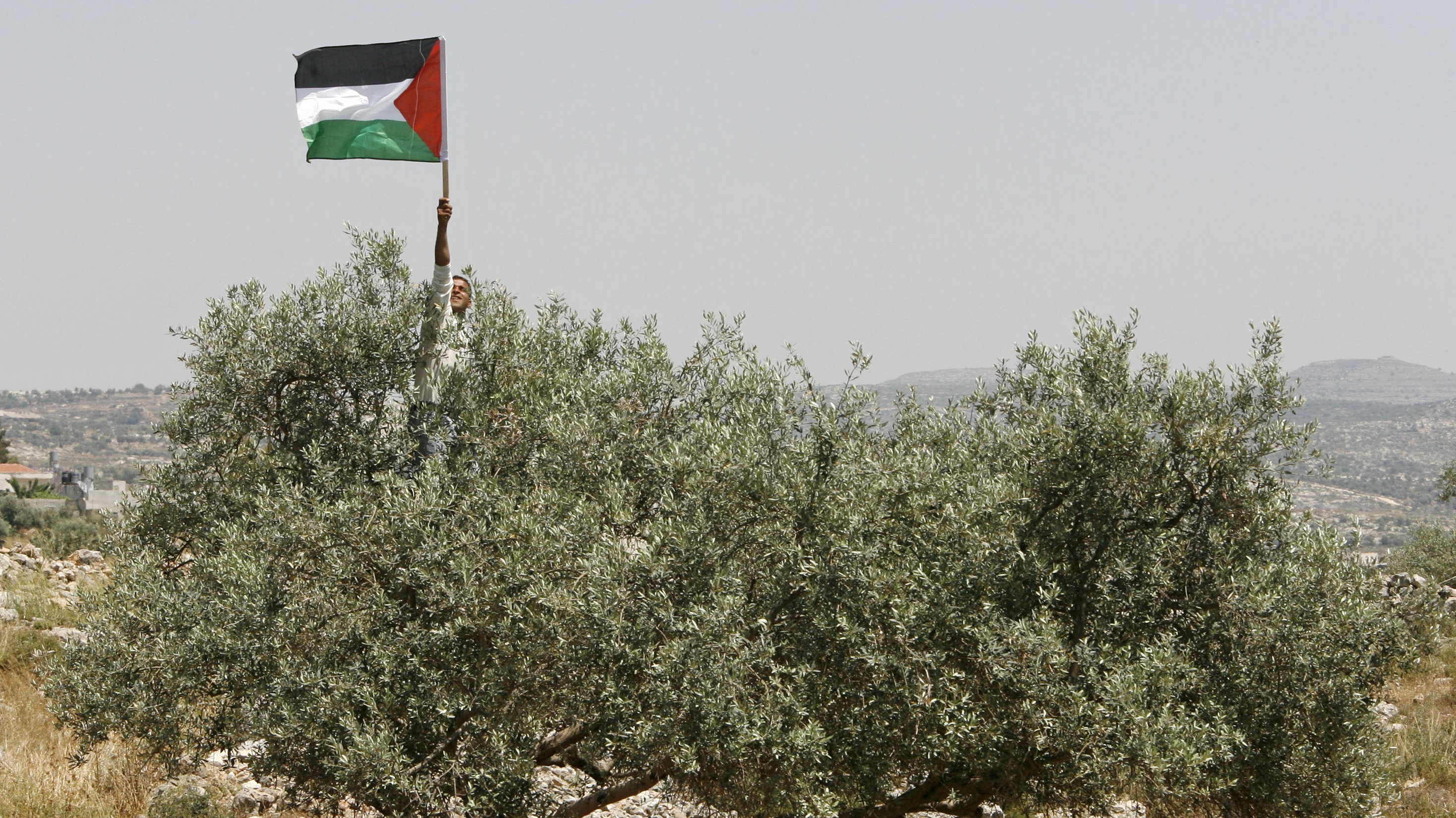 Palestinian flag in Bilin.