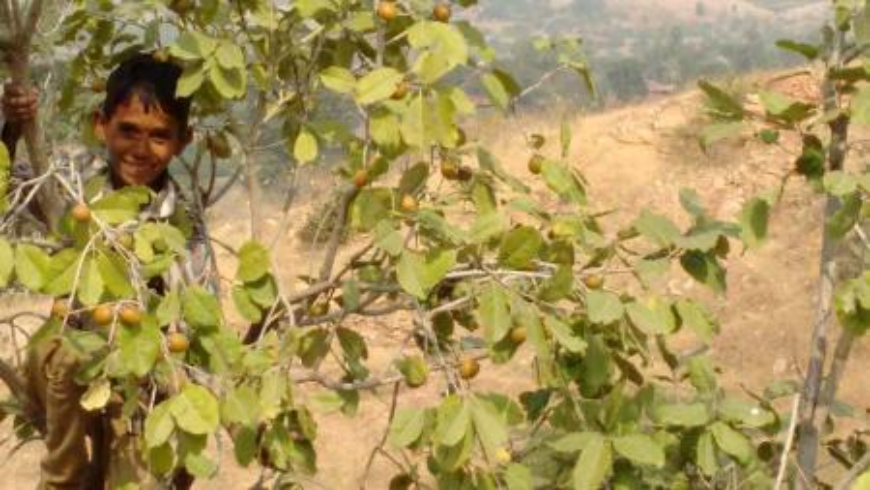 India-Rajasthan-tribals