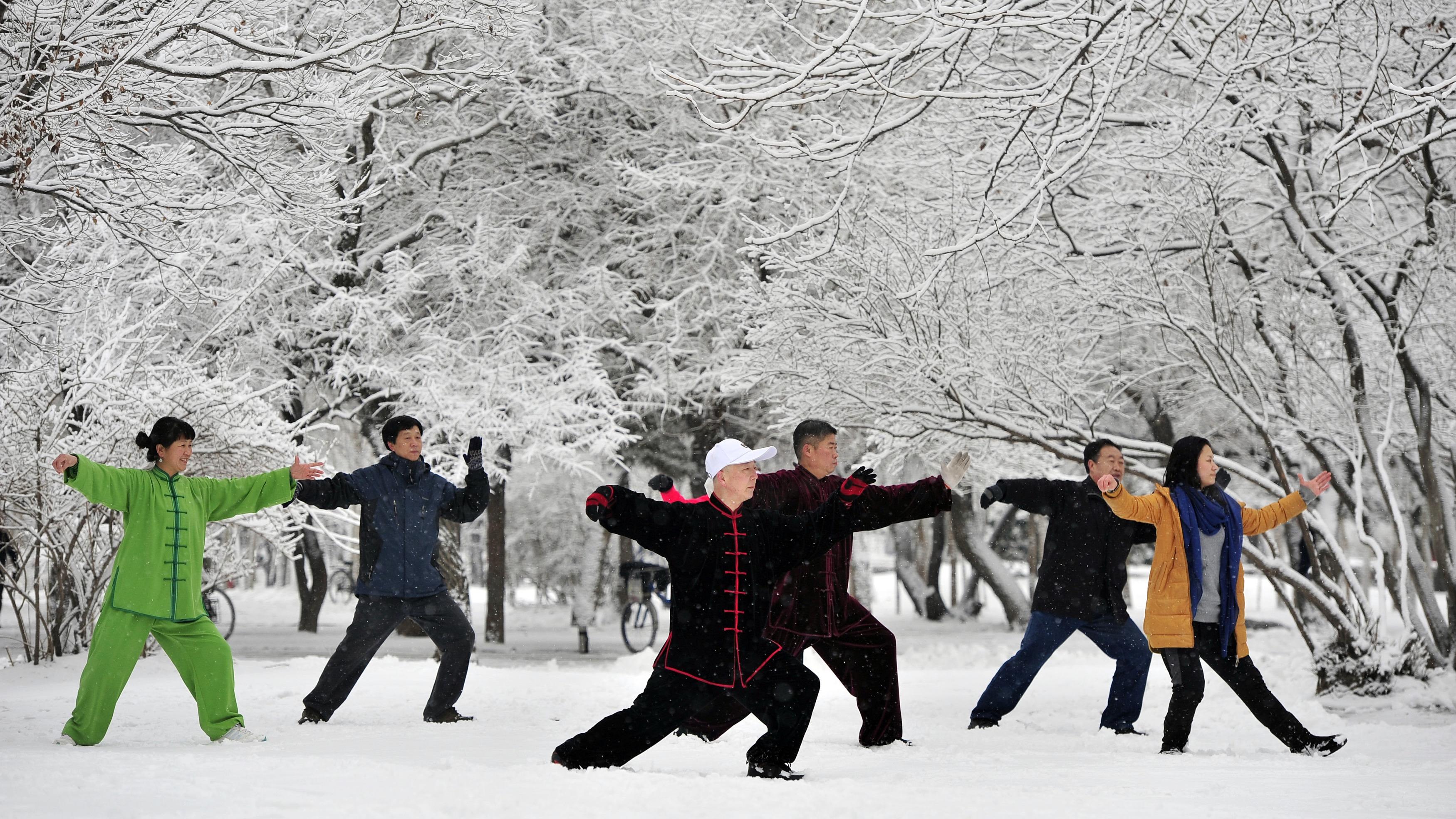 Tai Chi winter