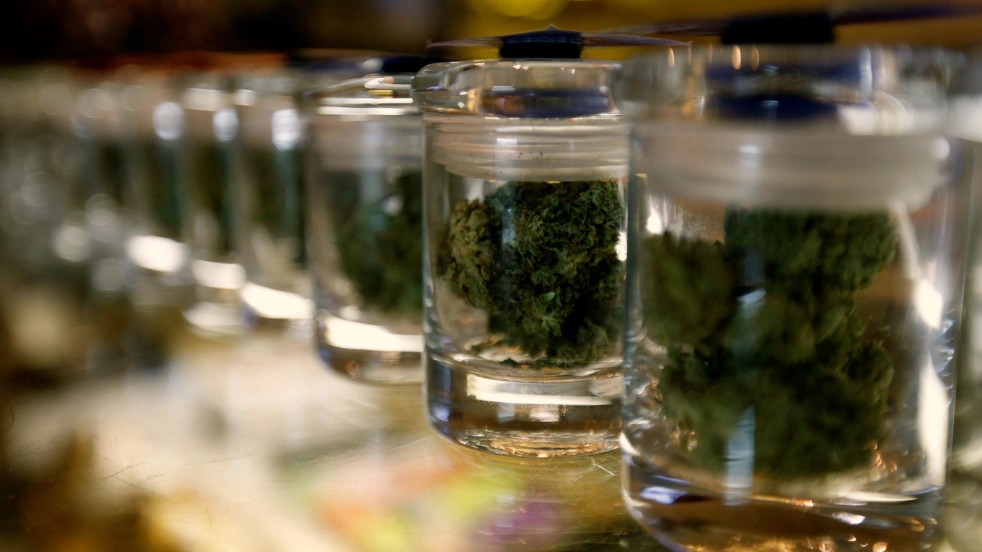 Medicinal marijuana buds in jars.