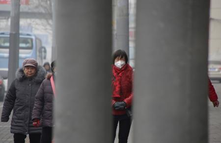 A woman wearing a mask walks along a street during smog on a polluted day in Beijing, China, January 5, 2017. REUTERS/Jason Lee - RTX2XL01