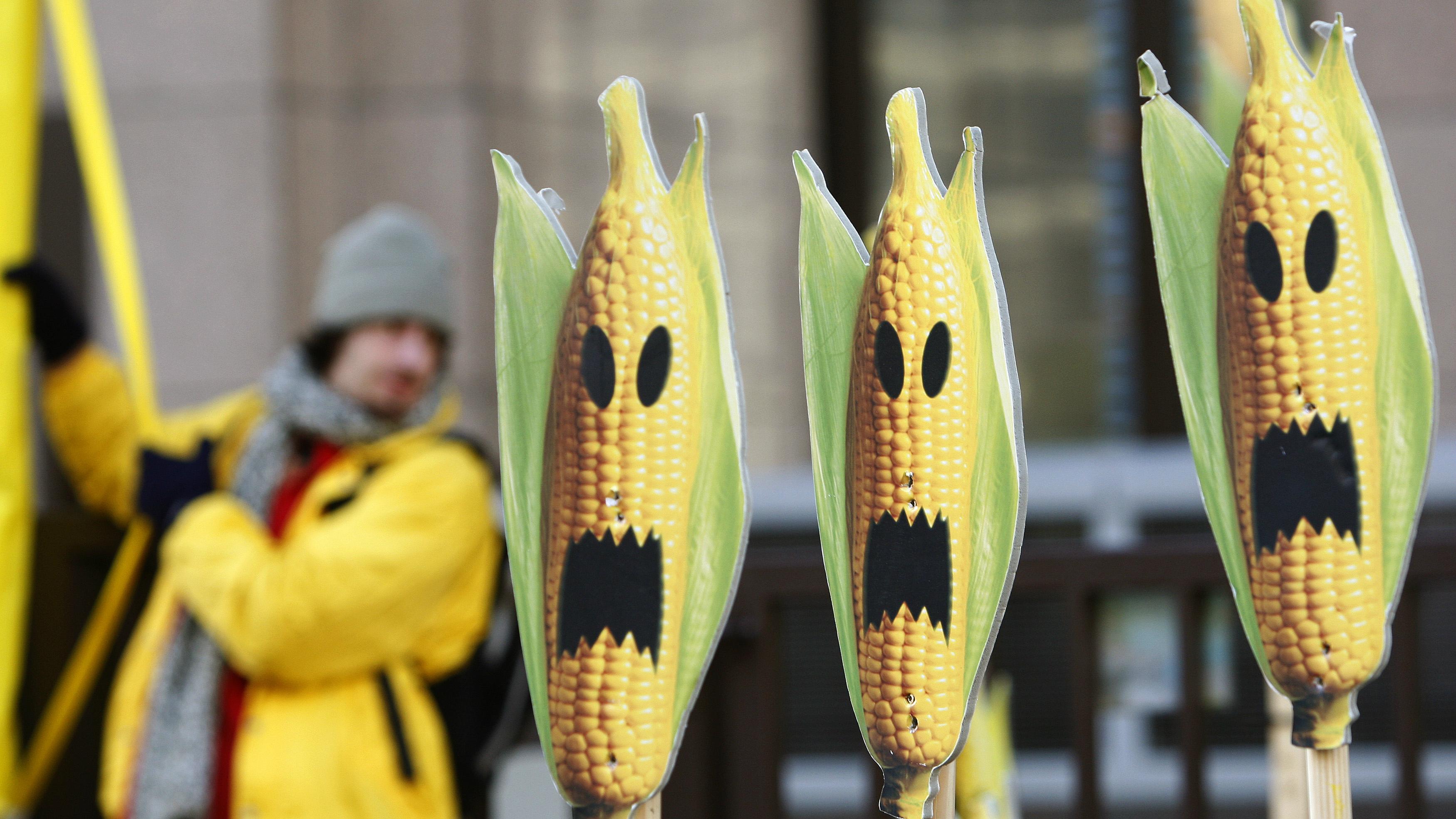 It's a political maize.