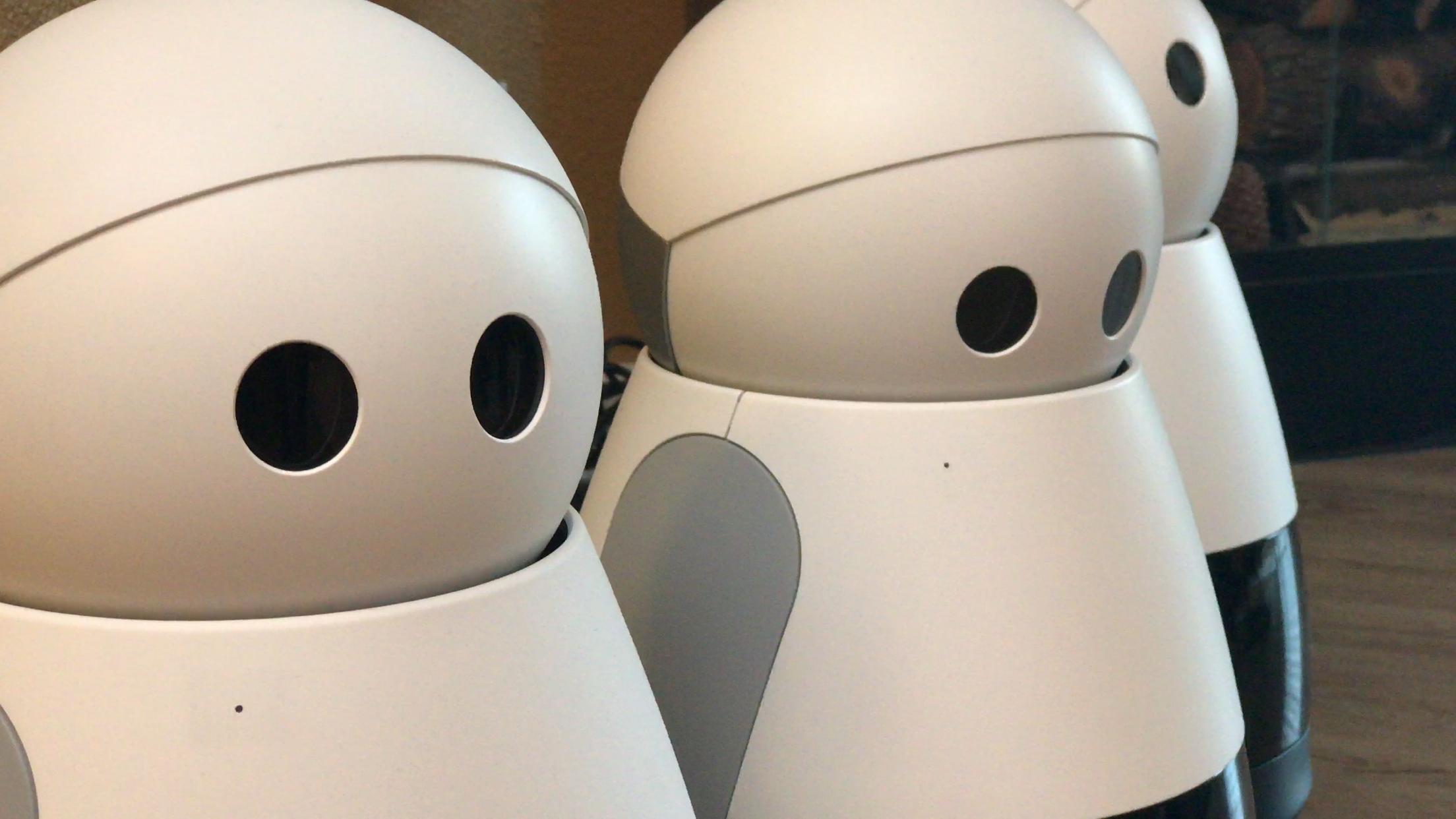 Kuri Mayfield Robotics