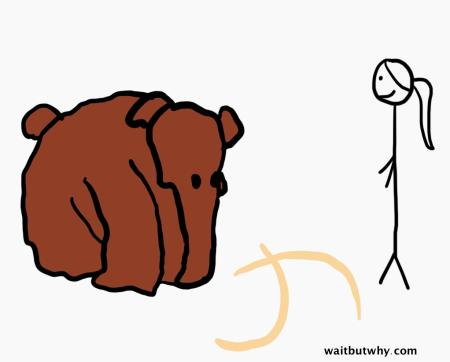 mammoth without tusks