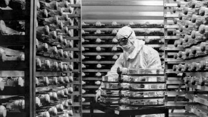 A historical photo of an old CDC virus research lab.