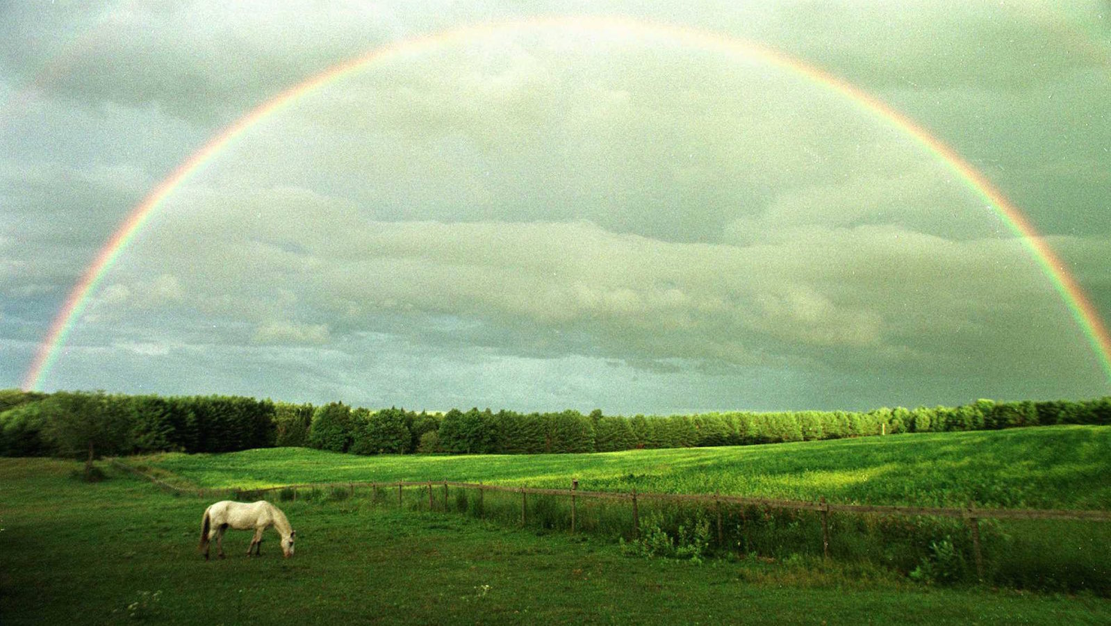 A horse grazes in a field in Calais, Vt., July 18, 1997 under the arch of a rainbow.