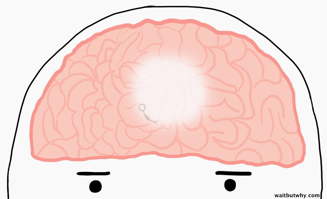 smaller man laying in brain