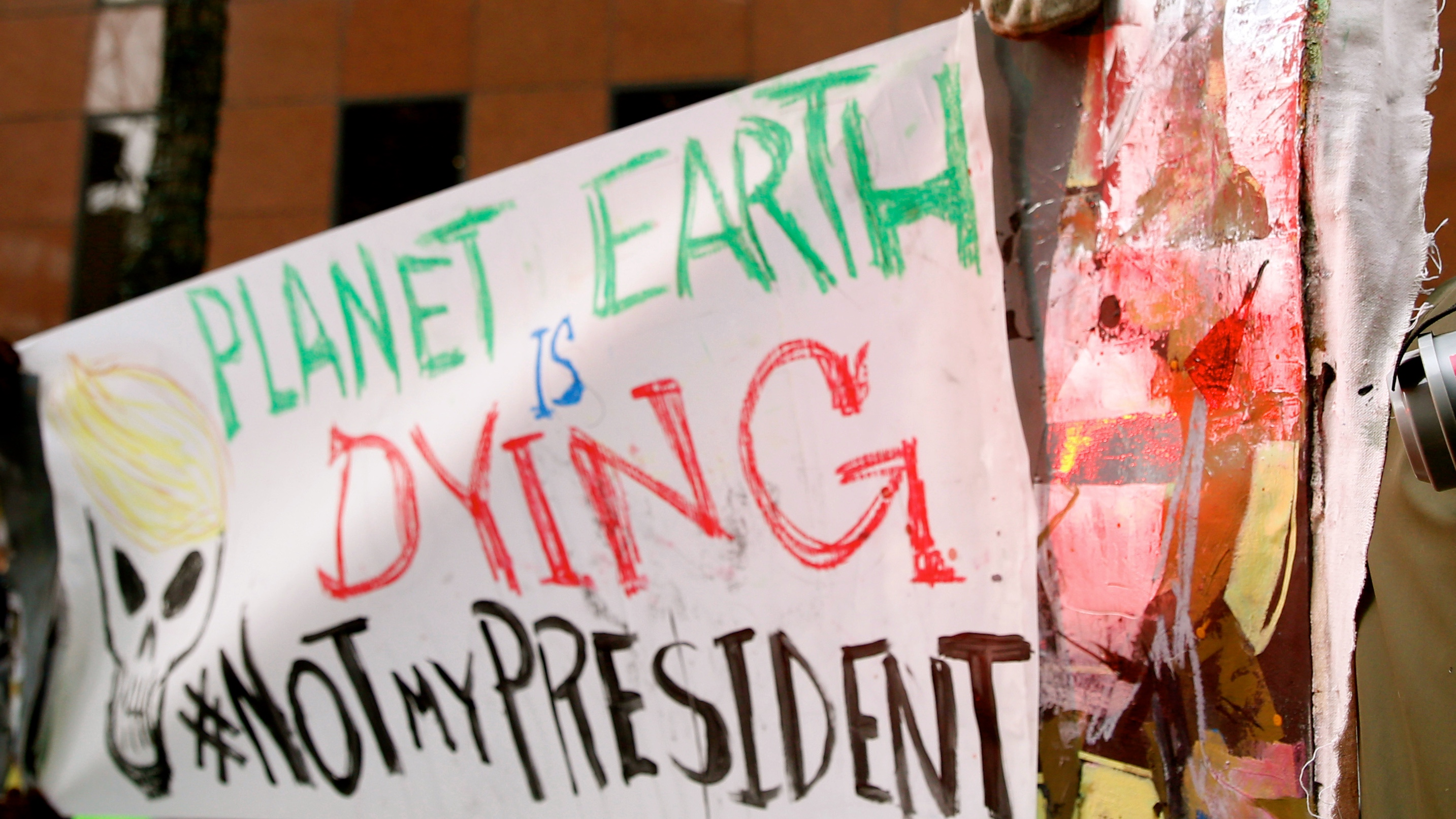 Planet earth is dying sign at protest in NY, January 2017.