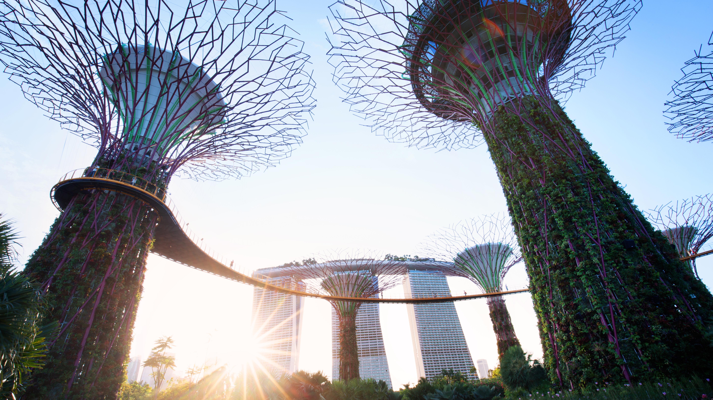 How singapore became asias greenest city quartz no natural water supply no problem malvernweather Choice Image