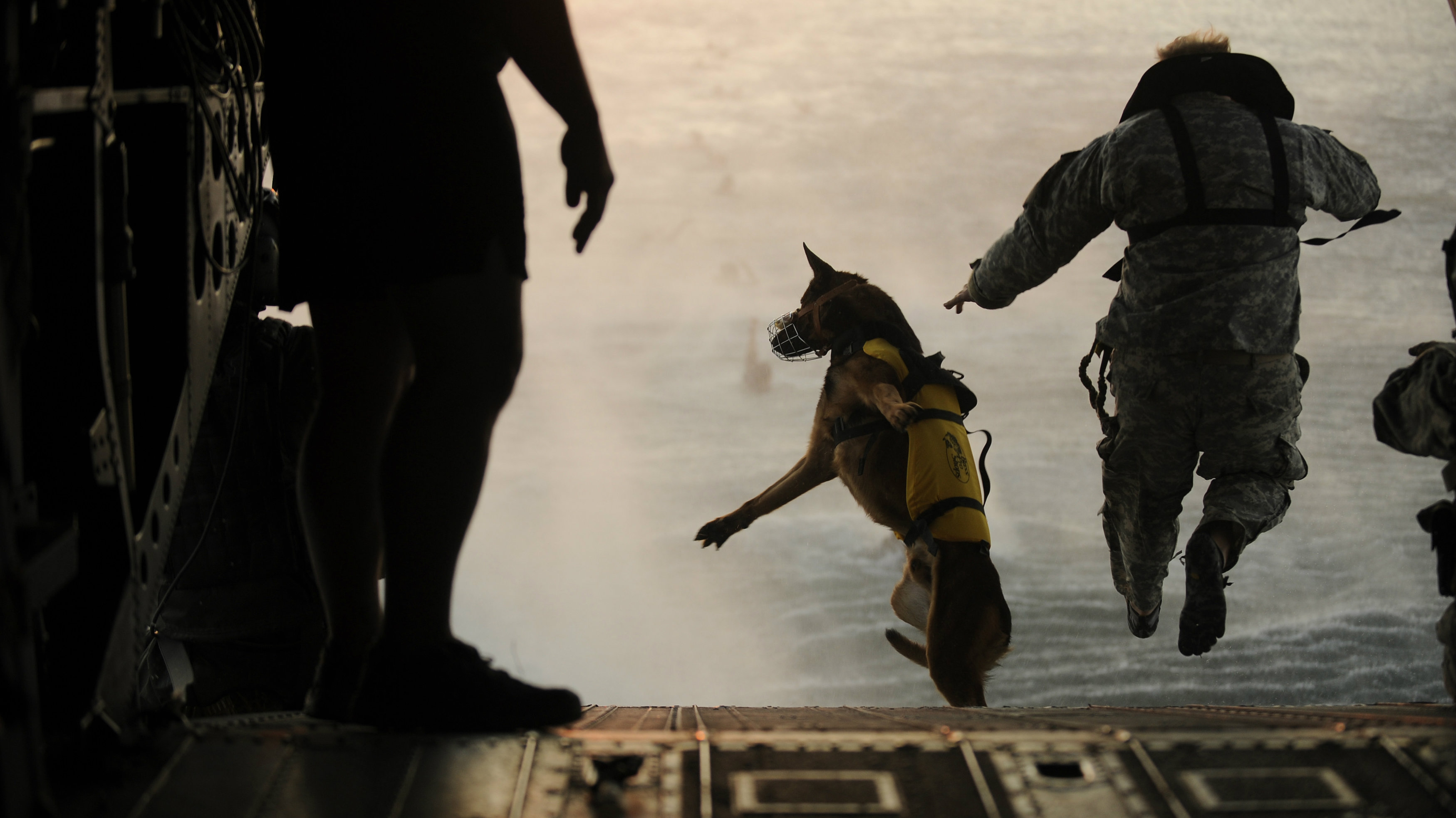 A U.S. Army soldier with the 10th Special Forces Group and his military working dog jump off the ramp of a CH-47 Chinook helicopter from the 160th Special Operations Aviation Regiment during water training over the Gulf of Mexico as part of exercise Emerald Warrior 2011 in this U.S. military handout image from March 1, 2011. The New York Times and other United States media have reported that a military canine accompanied Navy SEAL Team Six commandos into a compound in Abbottabad, Pakistan in a raid that killed al Qaeda leader Osama bin Laden. REUTERS/Manuel J. Martinez/U.S. Air Force/Handout (UNITED STATES - Tags: ANIMALS MILITARY CONFLICT CIVIL UNREST) FOR EDITORIAL USE ONLY. NOT FOR SALE FOR MARKETING OR ADVERTISING CAMPAIGNS. THIS IMAGE HAS BEEN SUPPLIED BY A THIRD PARTY. IT IS DISTRIBUTED, EXACTLY AS RECEIVED BY REUTERS, AS A SERVICE TO CLIENTS