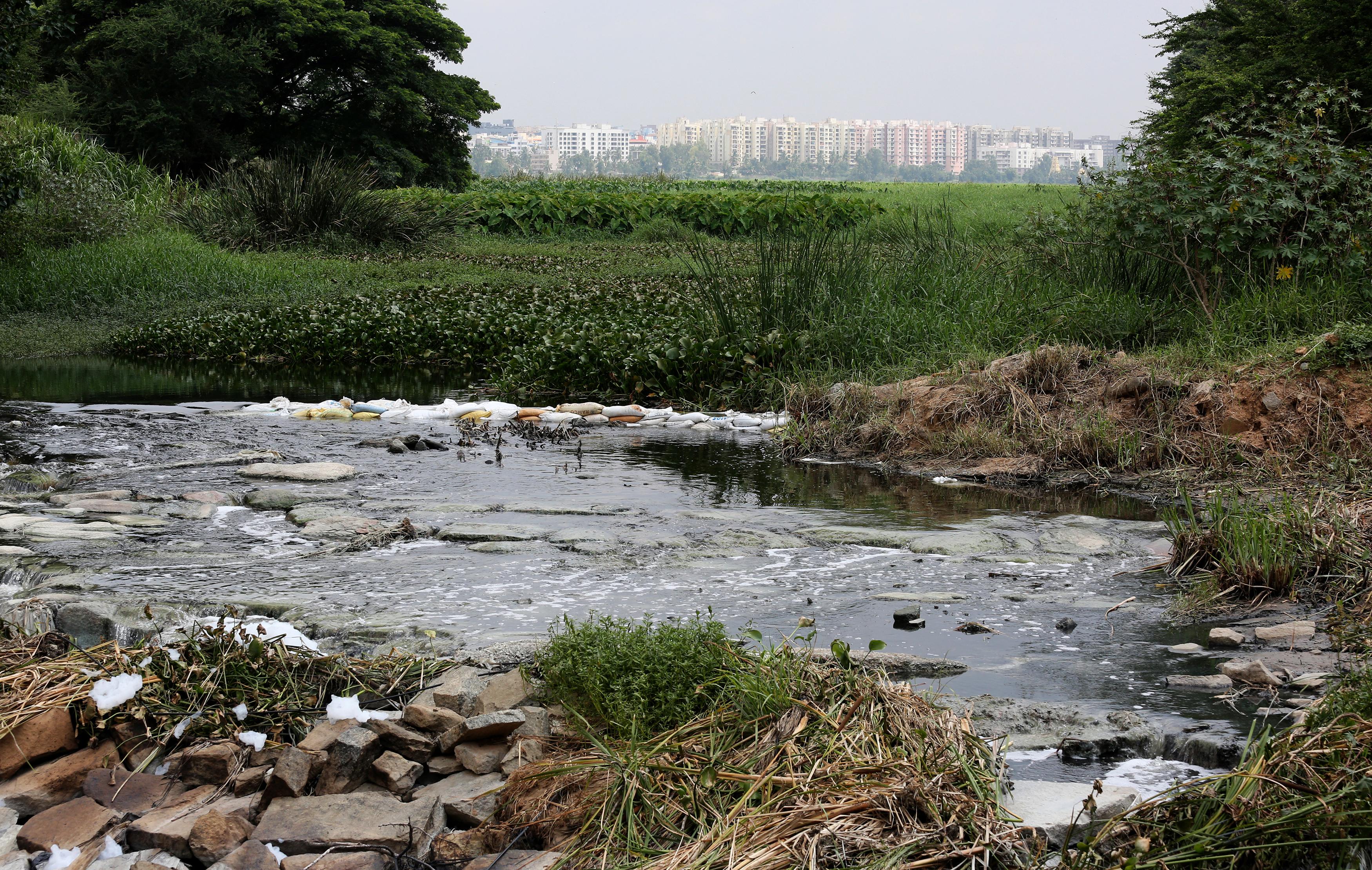 India-Bangalore-Lakes