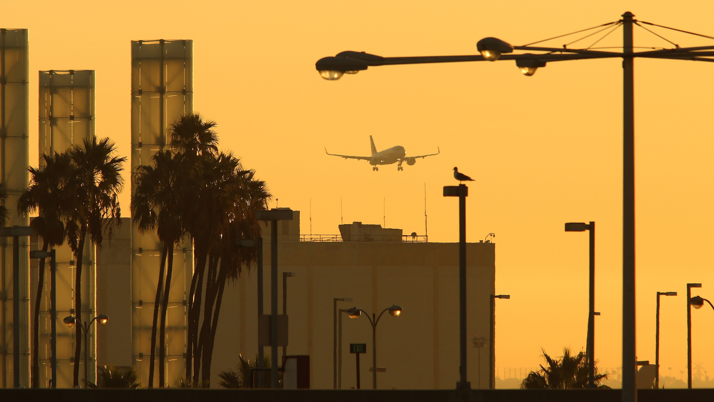 A jet approaches Los Angeles International Airport (LAX) where a Lebanese-American journalist was recently detained and ordered to turn over her cellphone.