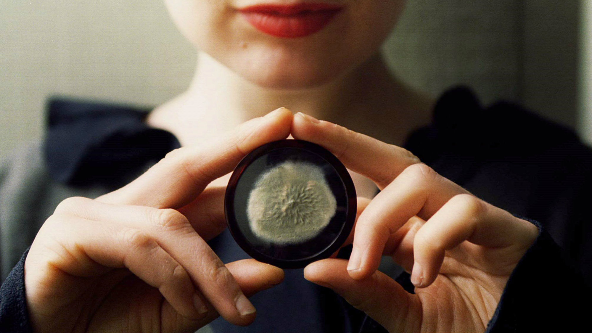 A sample of the original penicillin mould cultivated by scientific pioneer Alexander Fleming. Photo is from 1996, the year this piece sold at auction.