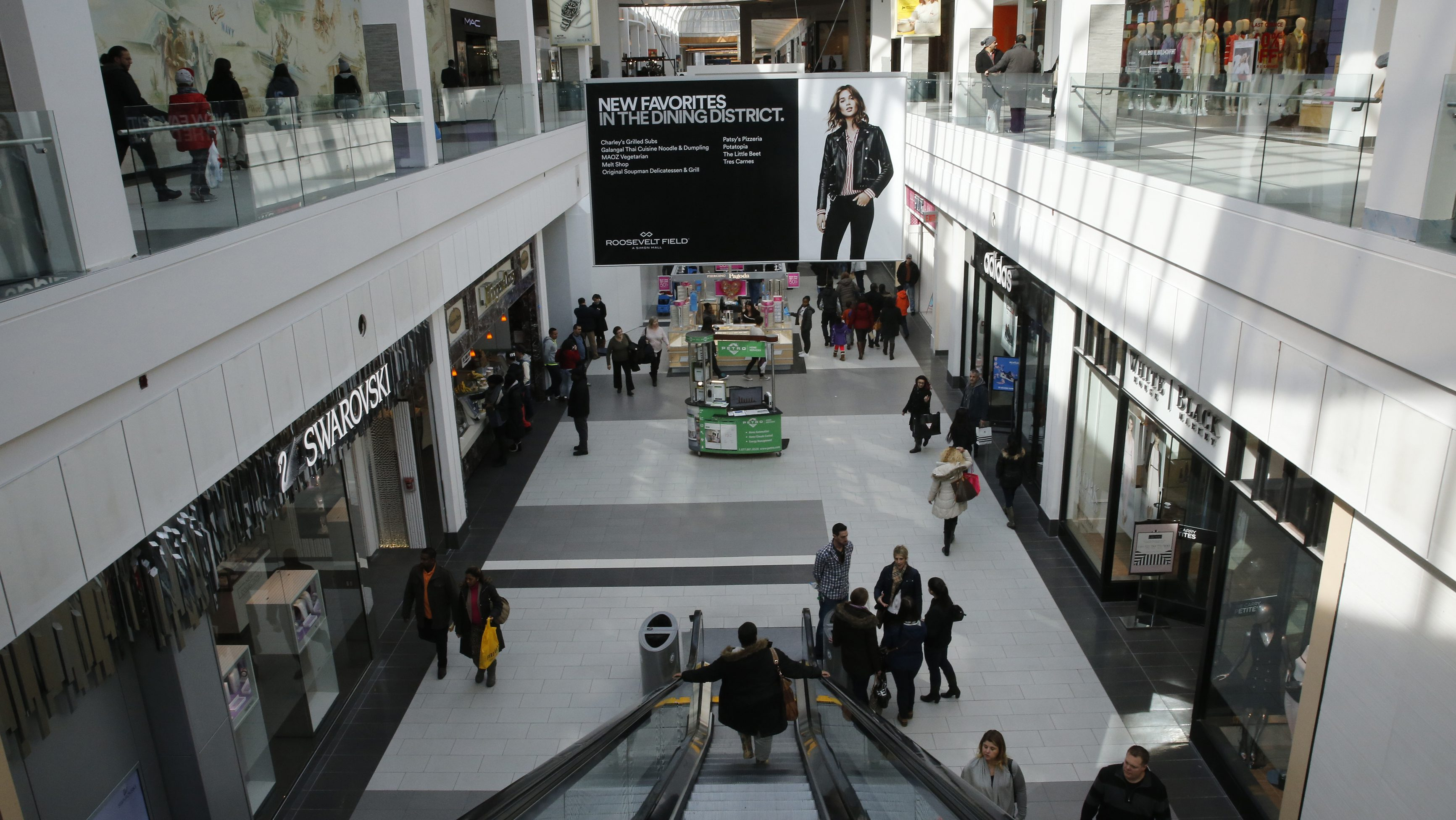 People are seen walking through Roosevelt Field shopping mall in Garden City, New York February 22, 2015.