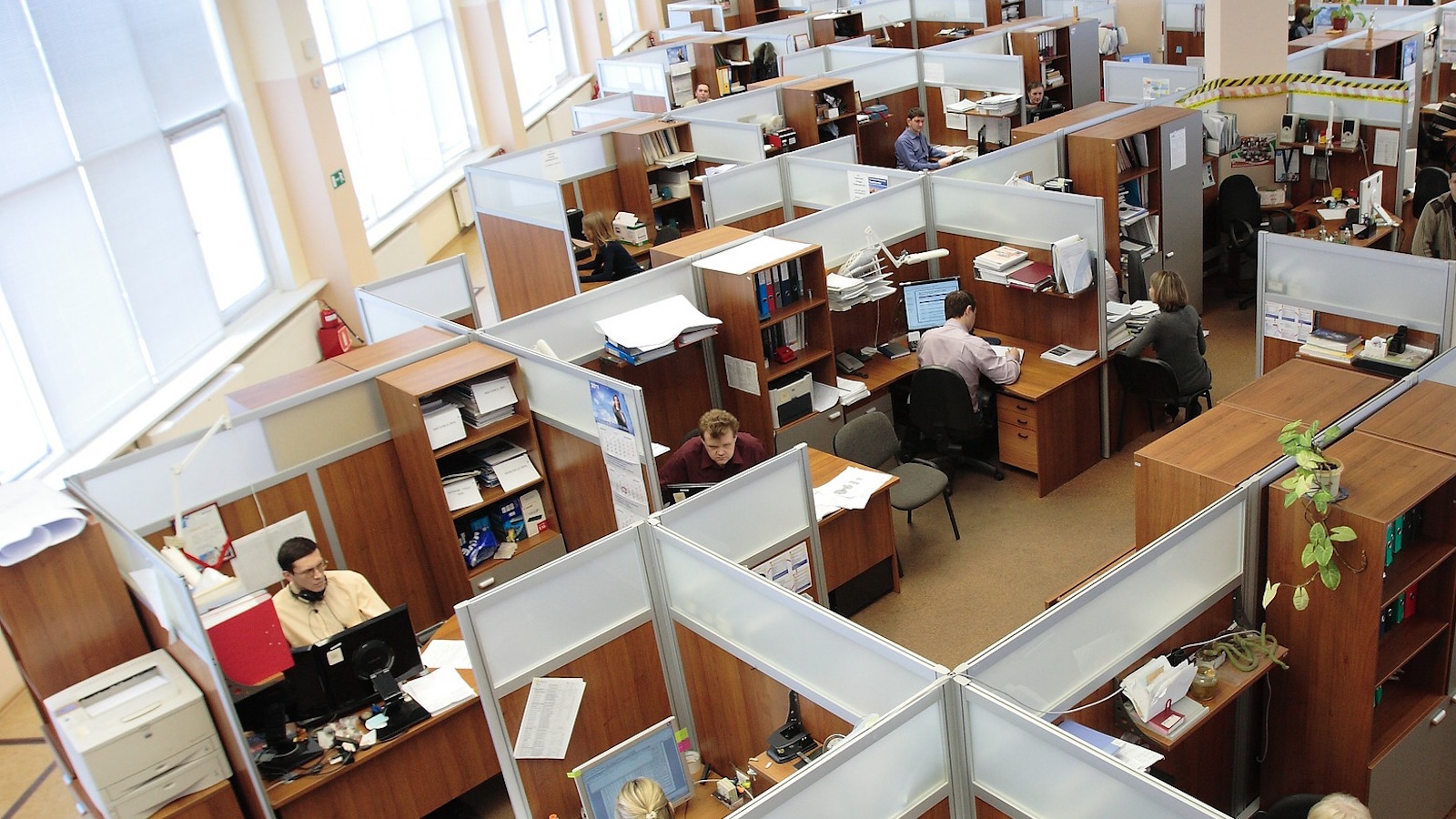 workplace cubicles