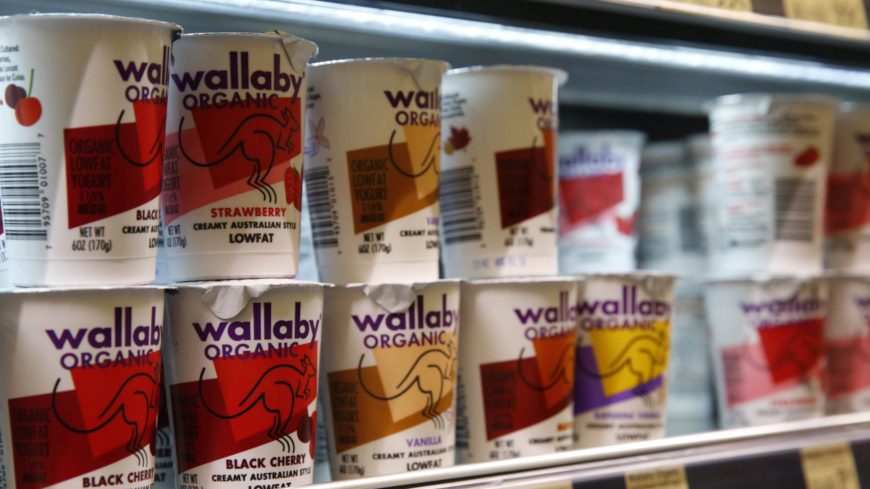 Yogurt made by the WhiteWave brand Wallaby Organic is in stock at Alfalfa's Market, a locally-owned and independent grocery store in Boulder, Colo., Thursday, July 7, 2016. Yogurt giant Danone says it reached a $10 billion deal to buy Colorado-based American organic food maker WhiteWave, expanding the French company's foothold in health foods and the U.S. market. Paris-based Danone said in a statement Thursday that it is paying $56.25 per share in the deal, 24 percent above WhiteWave's average stock value over the previous month. (AP Photo/Brennan Linsley)