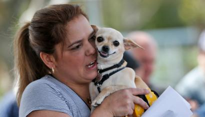 A pet owner holds her dog, talking to it