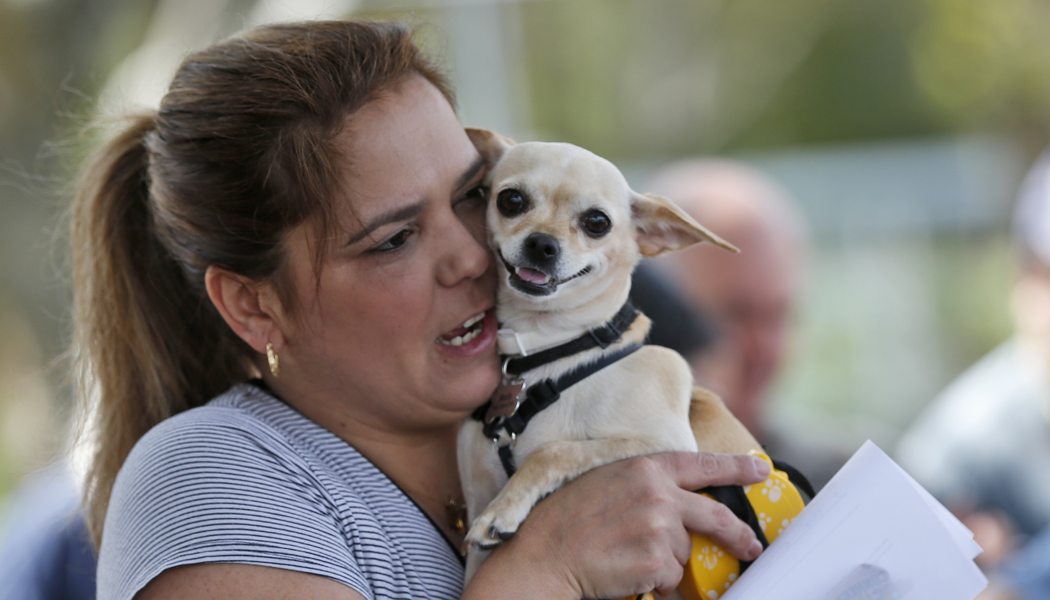 Anabel Marta holds her dog Molly as she waits to have her vaccinated at a mobile clinic, Thursday, March 9, 2017, in Miami. Miami-Dade Animal Services was vaccinating pets in the Kendal neighborhood where two confirmed cases of rabid raccoons had been reported. (AP Photo/Wilfredo Lee)