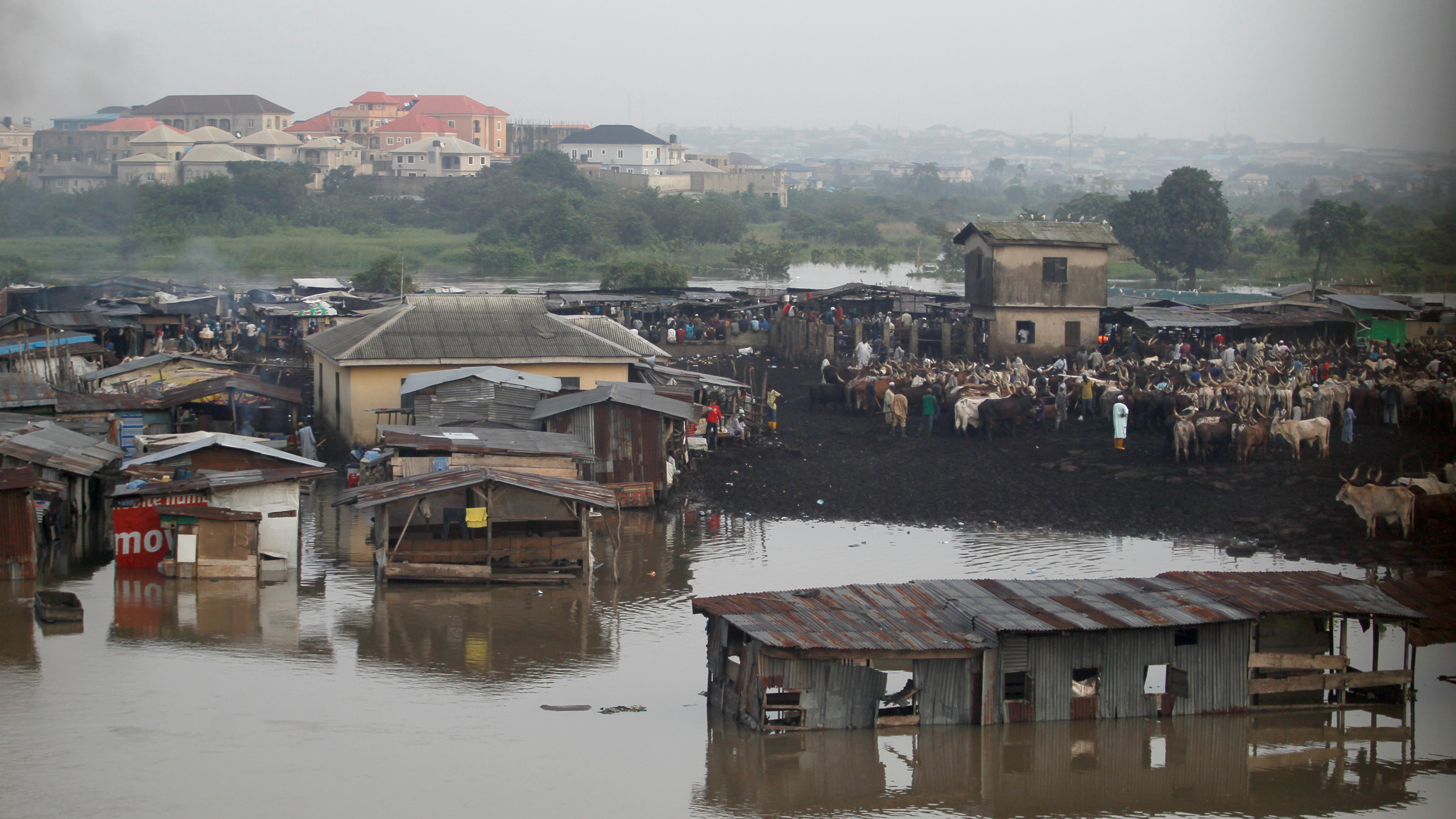The Ogun river swallows the bank near a livestock market outside Nigeria's commercial capital, Lagos.